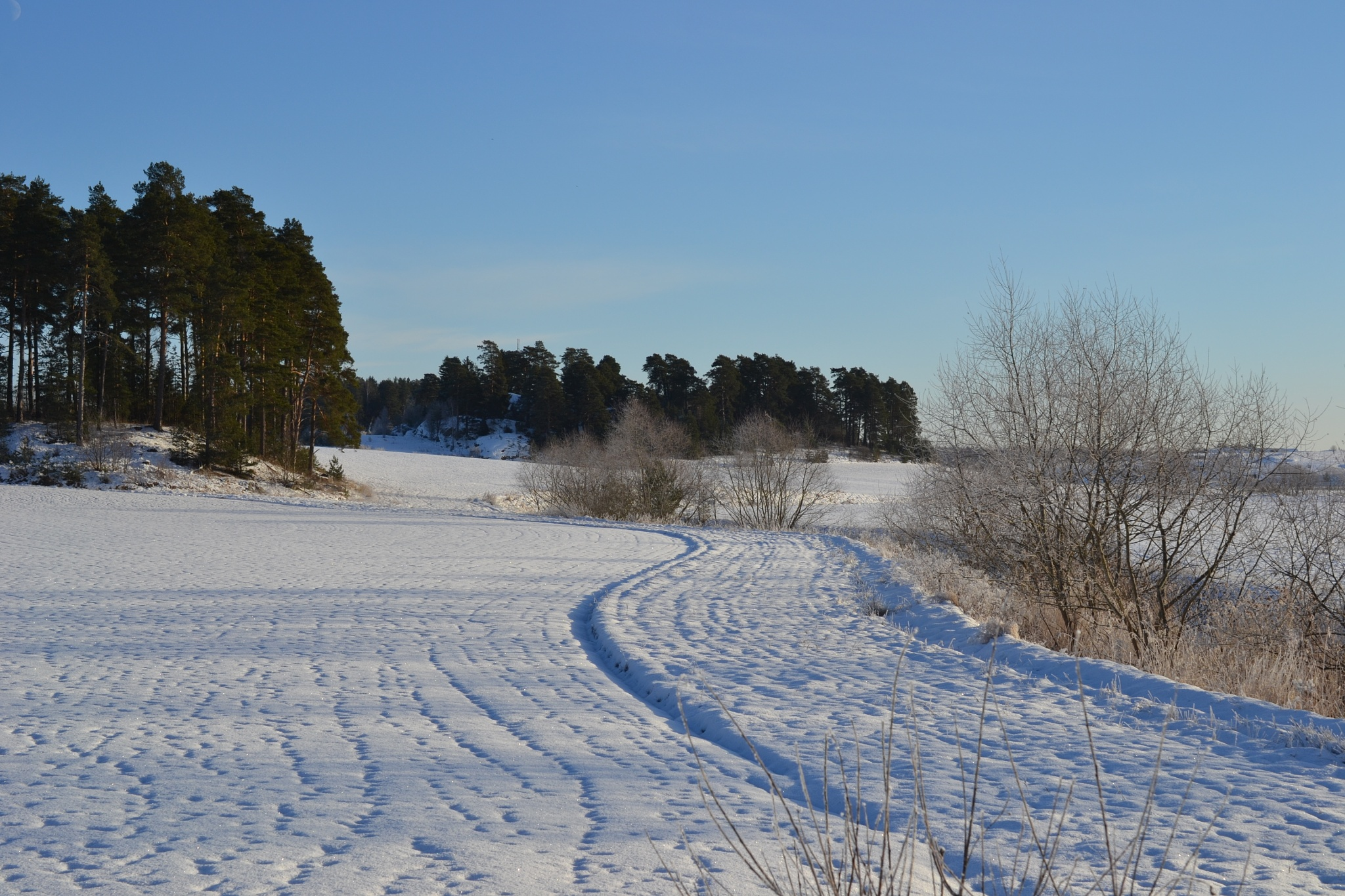 Winter curves by sweteach