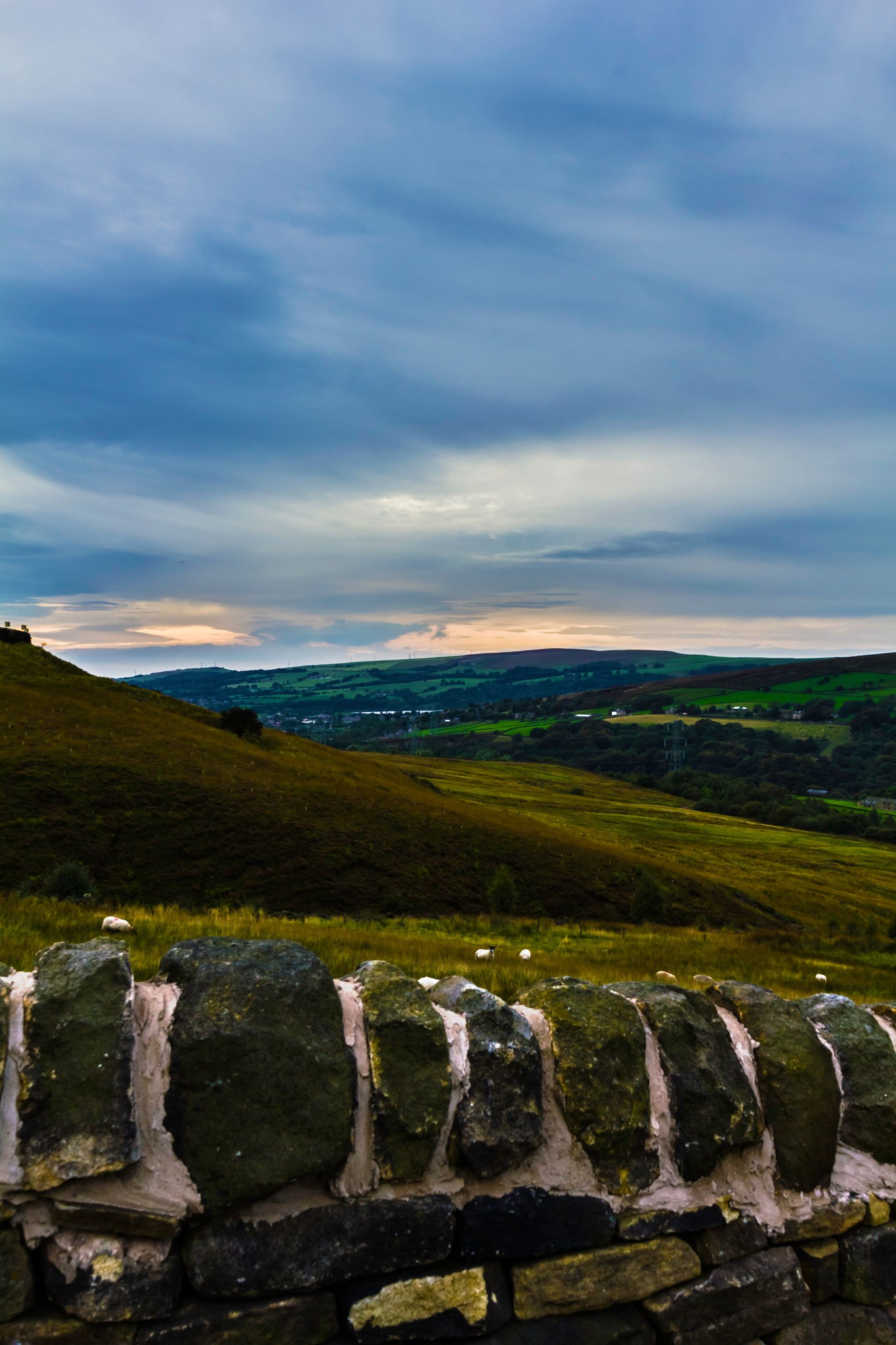 Where The Sheep Lay by Michelle Connor