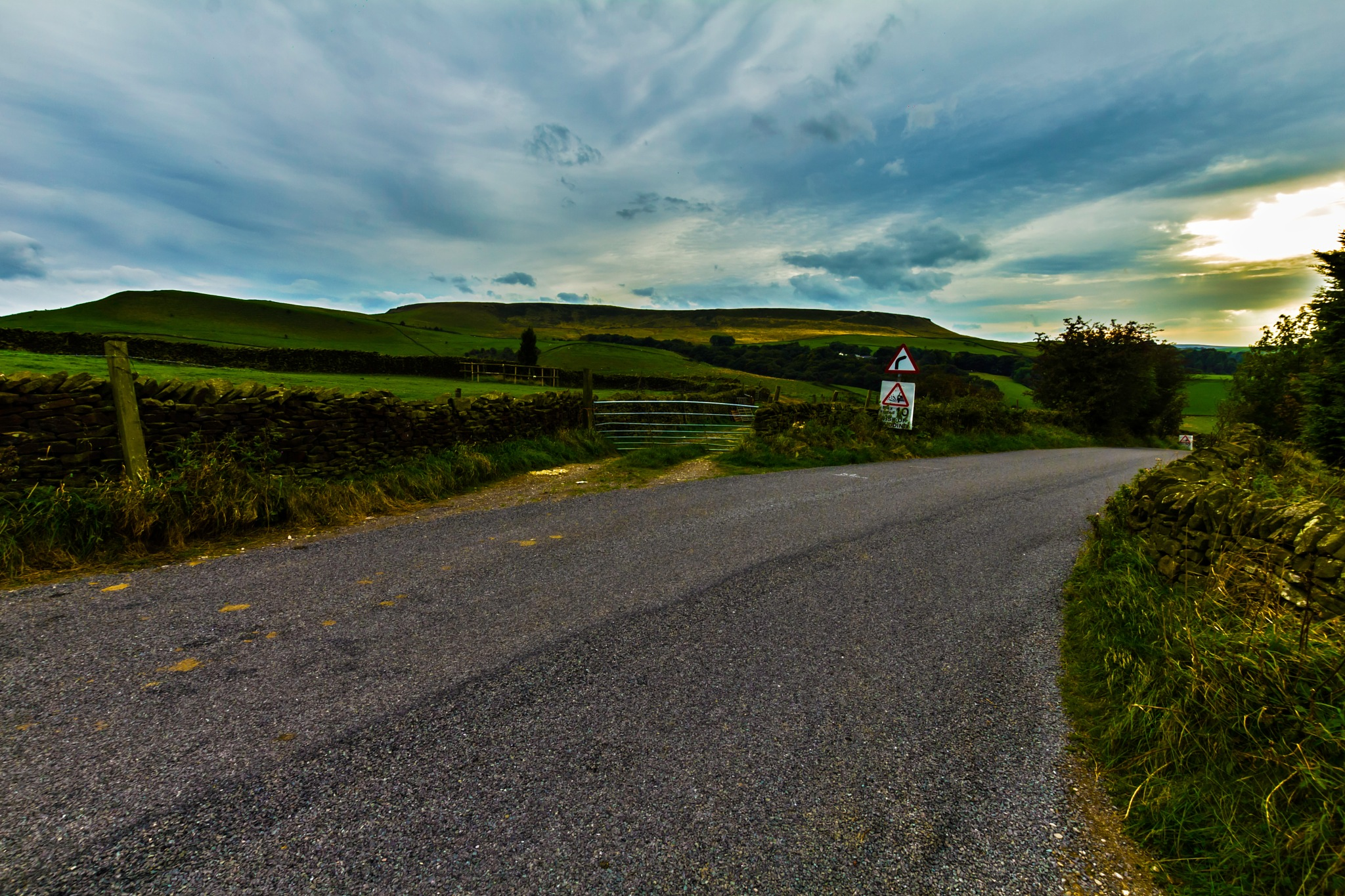 Curve in the Road by Michelle Connor