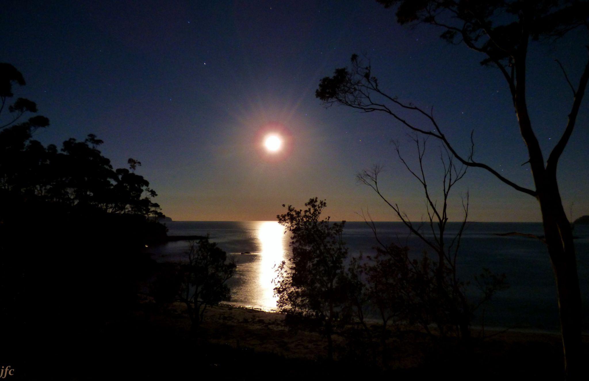 P1010740   moon glow by johnfalconcostanzo