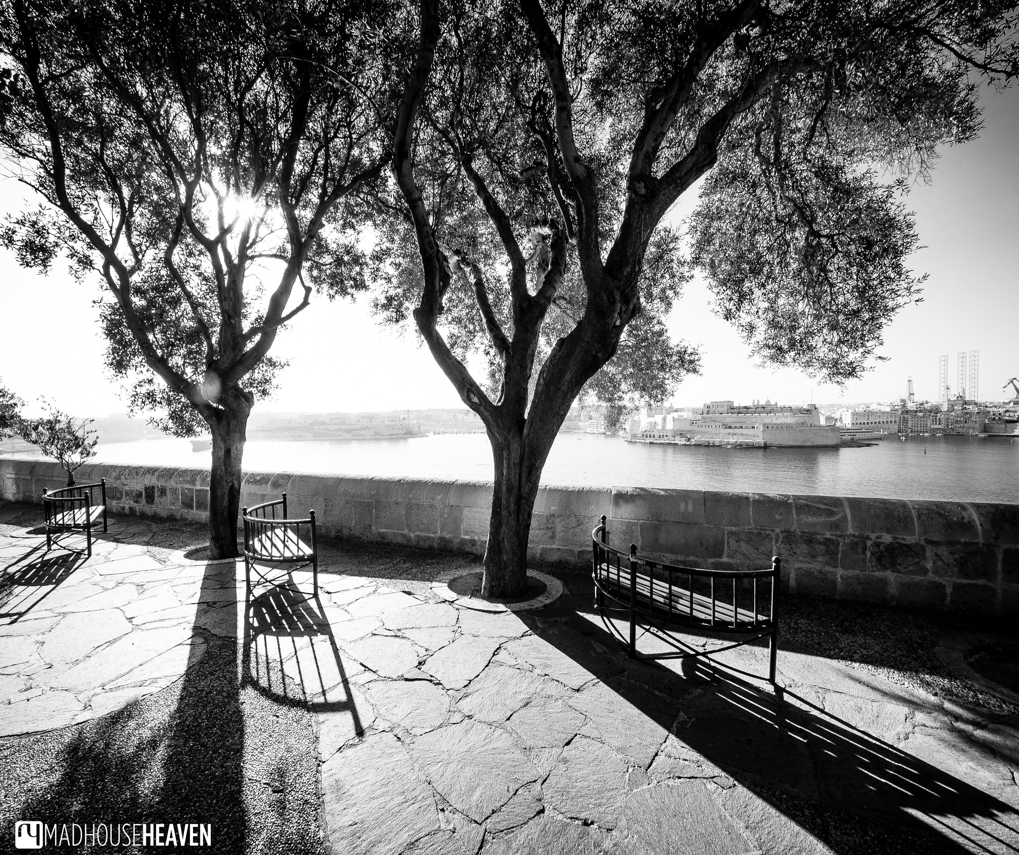Black and White in Valletta by Madhouse Heaven
