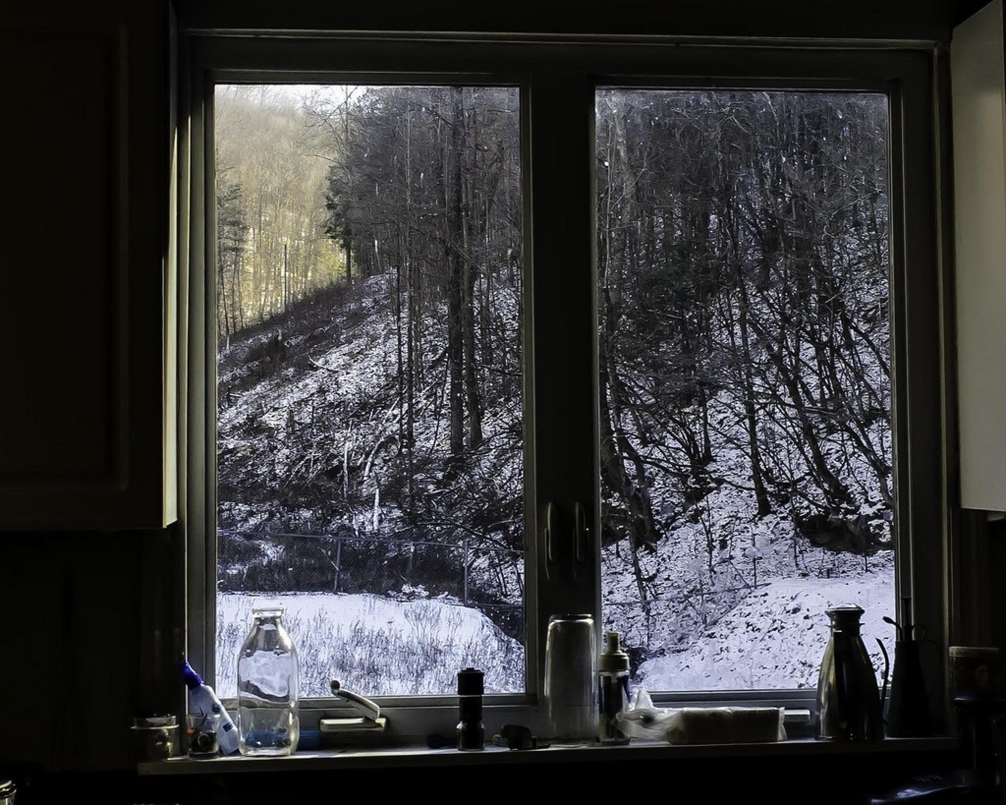 Thru A Winter Window by Edward Brown