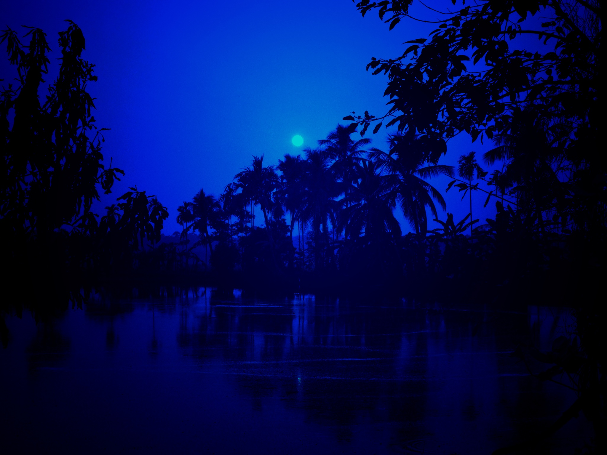 MOoN LiT night by tanay8690