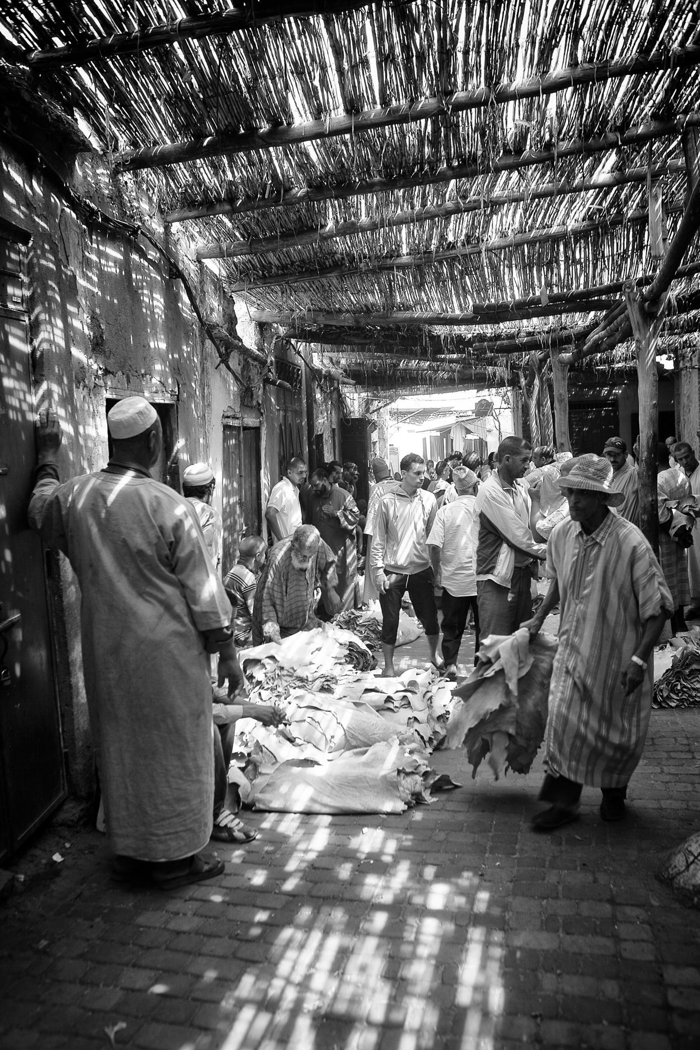 Goat skin market, Marrakesh, Morocco  by Tom Adank