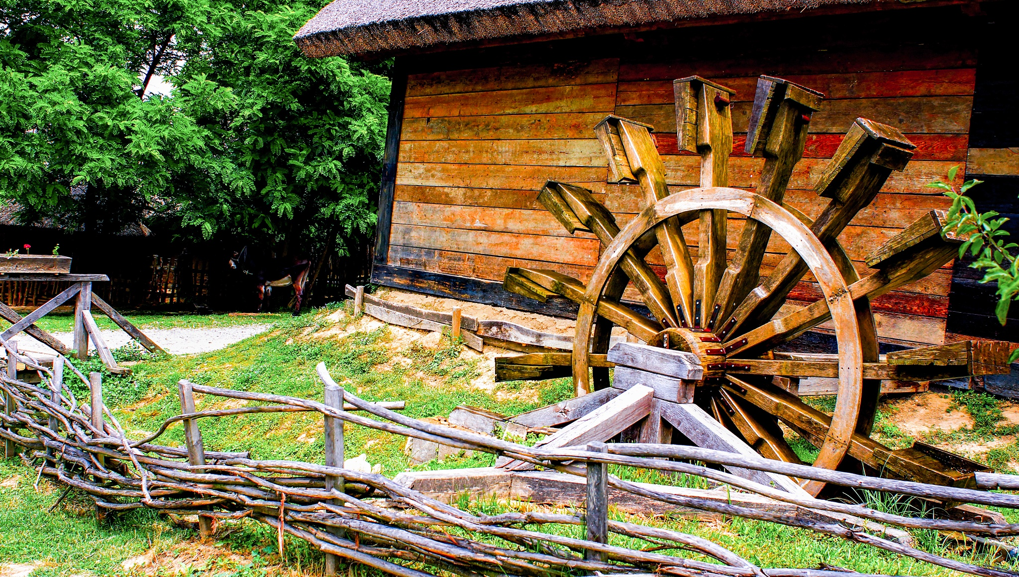Watermill - Bikal - Hungary by Tamas Filep