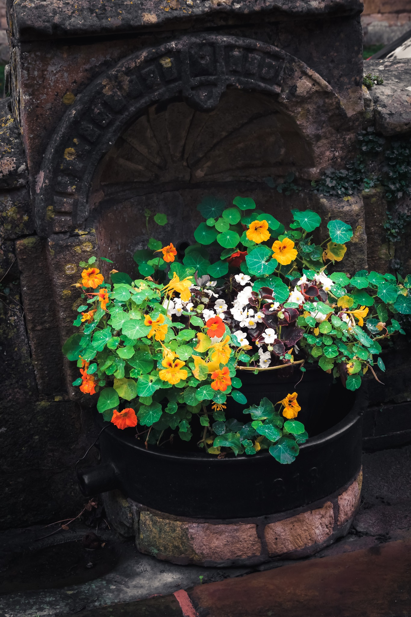 Flower Vase I by Fabio Rodrigues