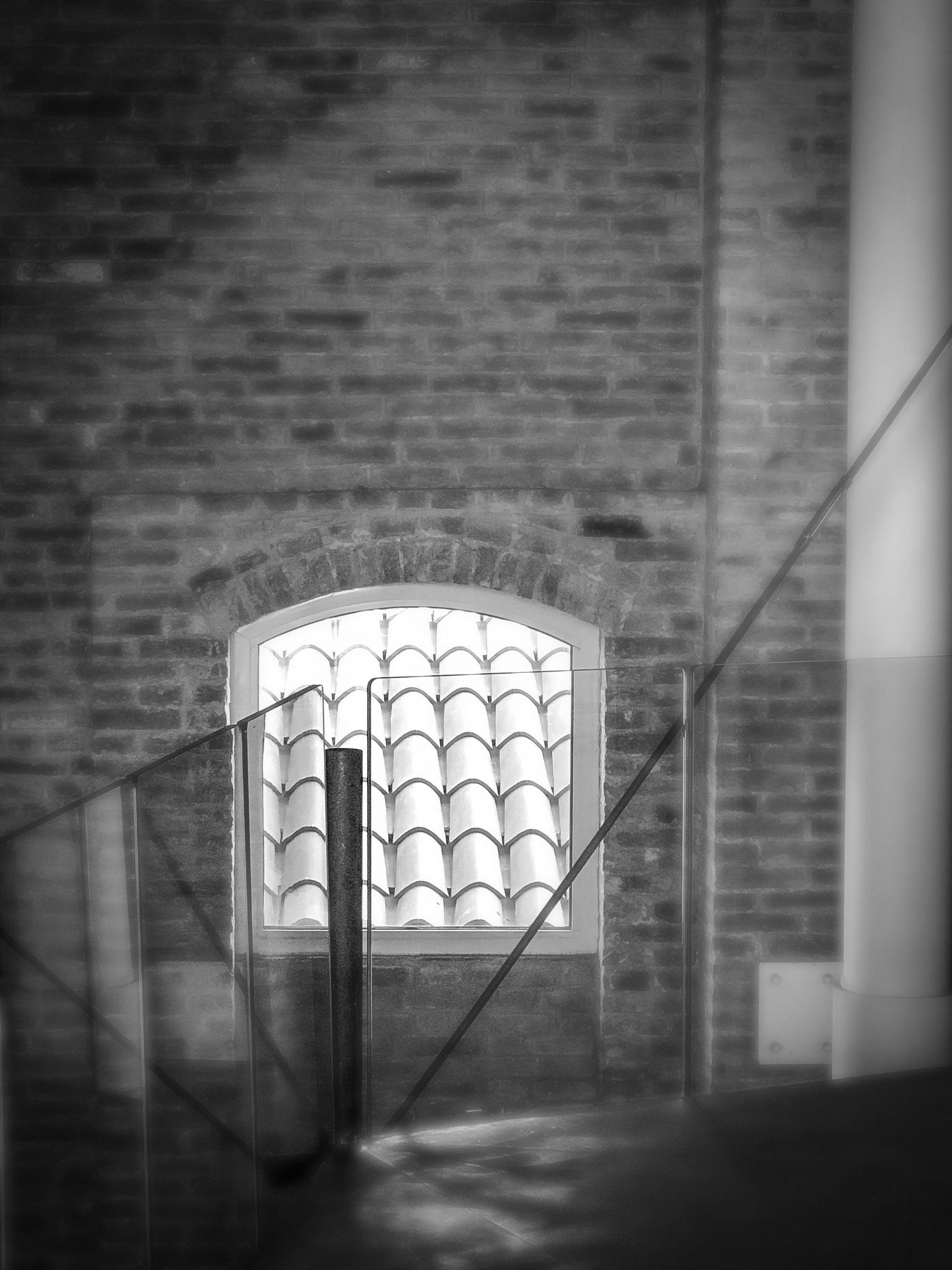 The window by manuel patti