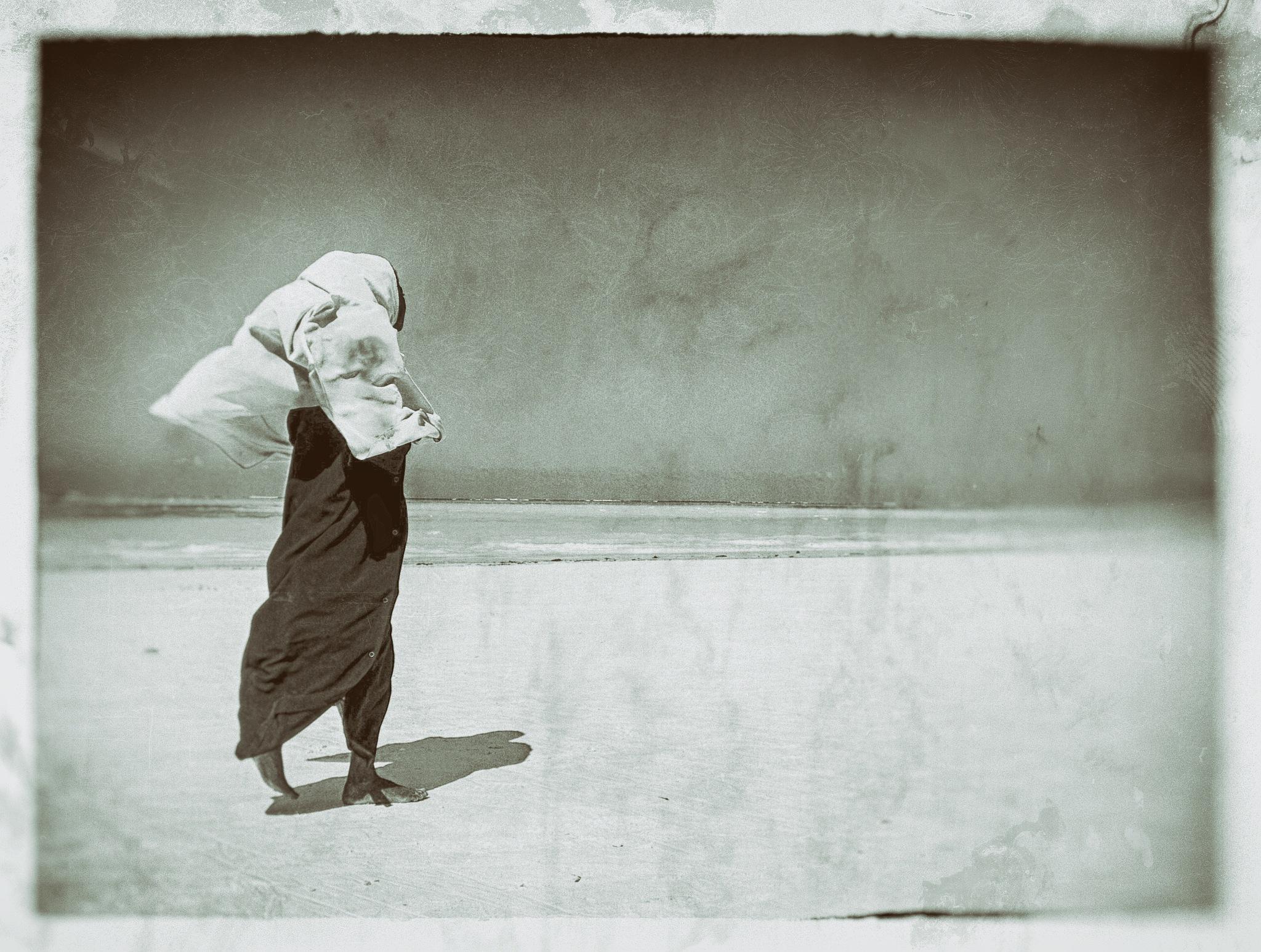 wind by manuel patti