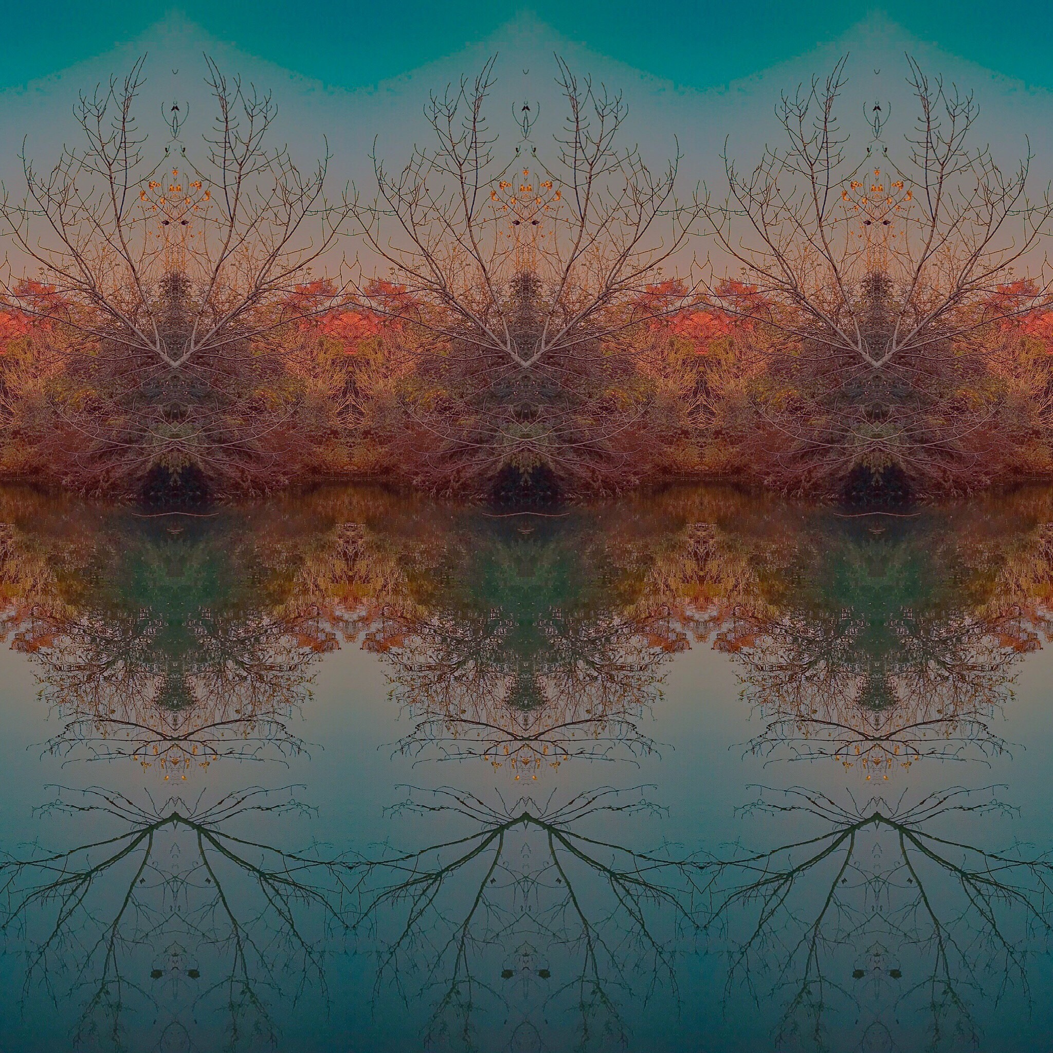 Abstract by manuel patti