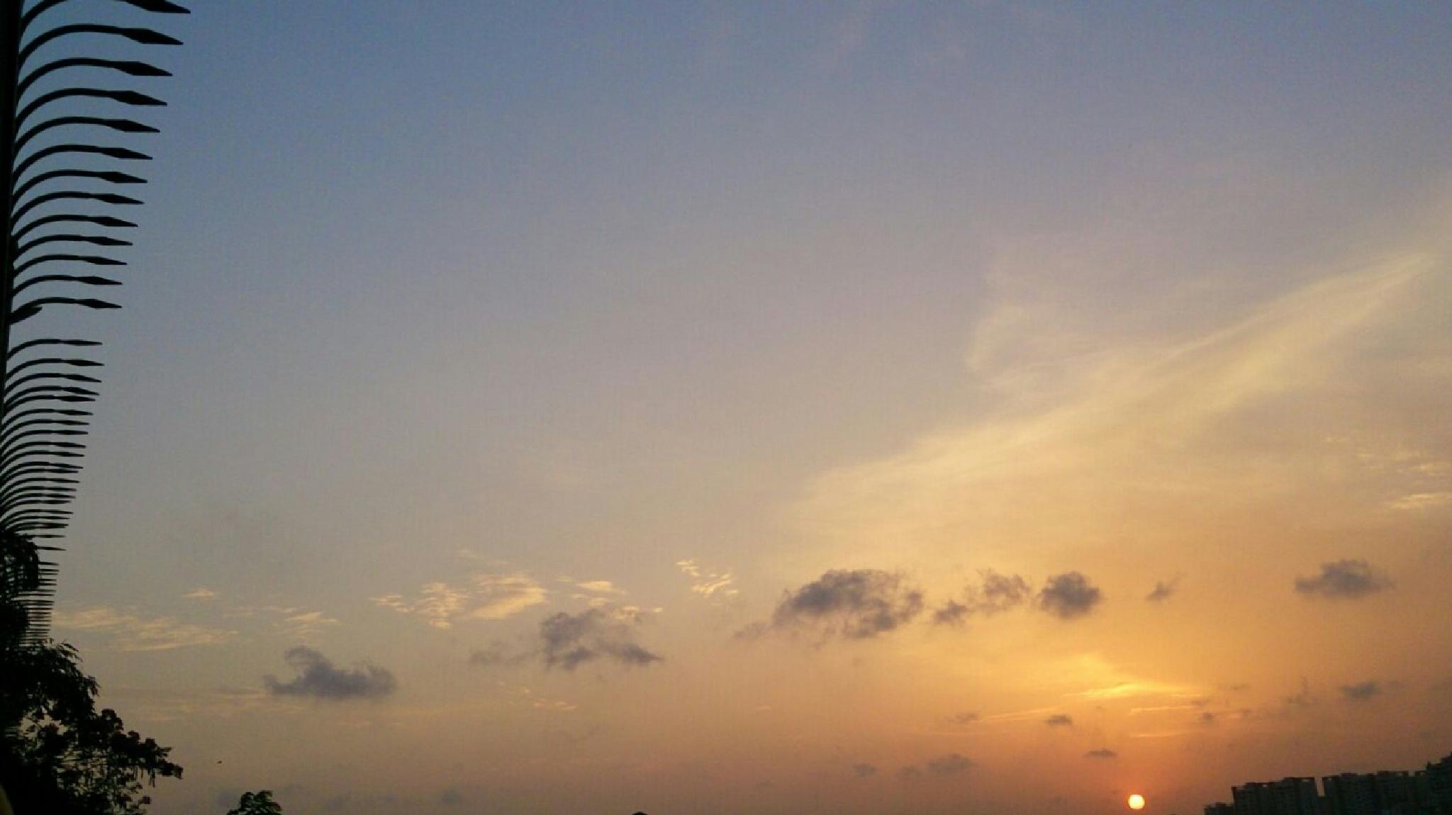 sunset by falsparsh