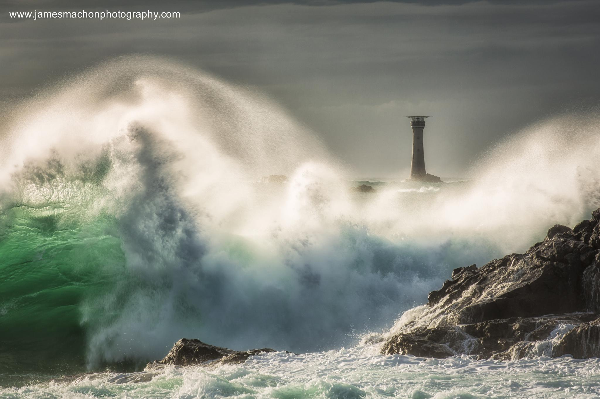 Wild! by James Machon Photography