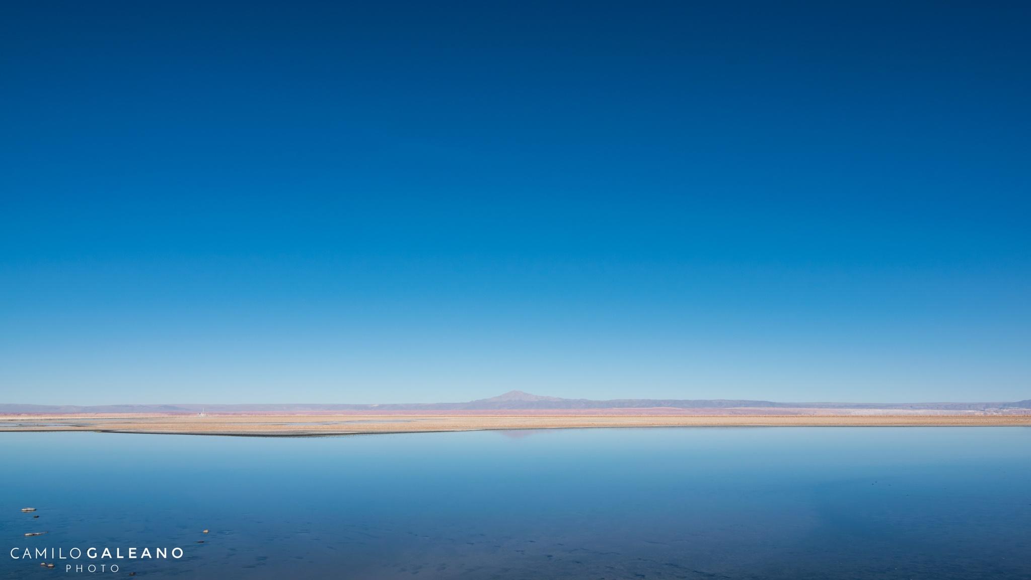 Blue alone by Camilo Galeano