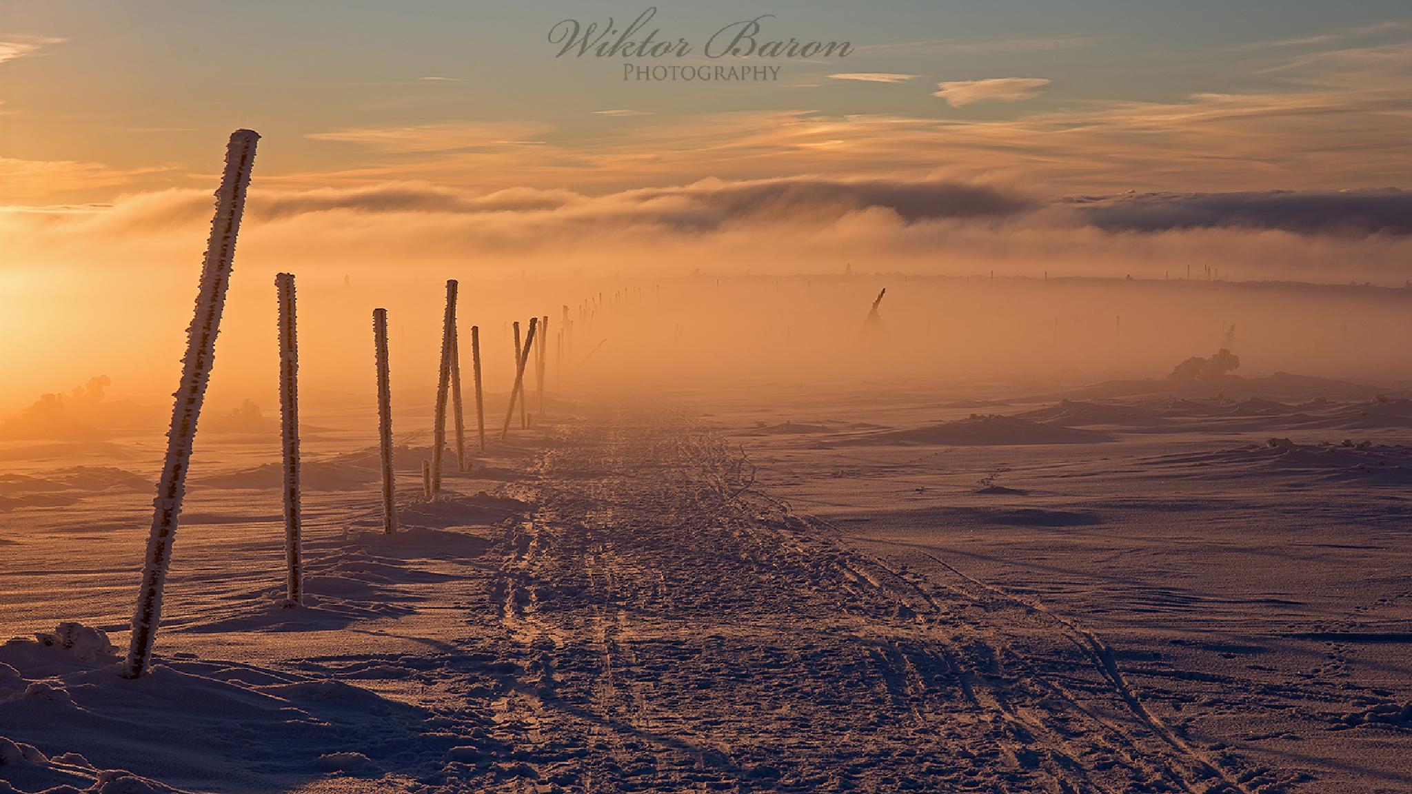 W drodze przez Karkonosze by Wiktor Baron