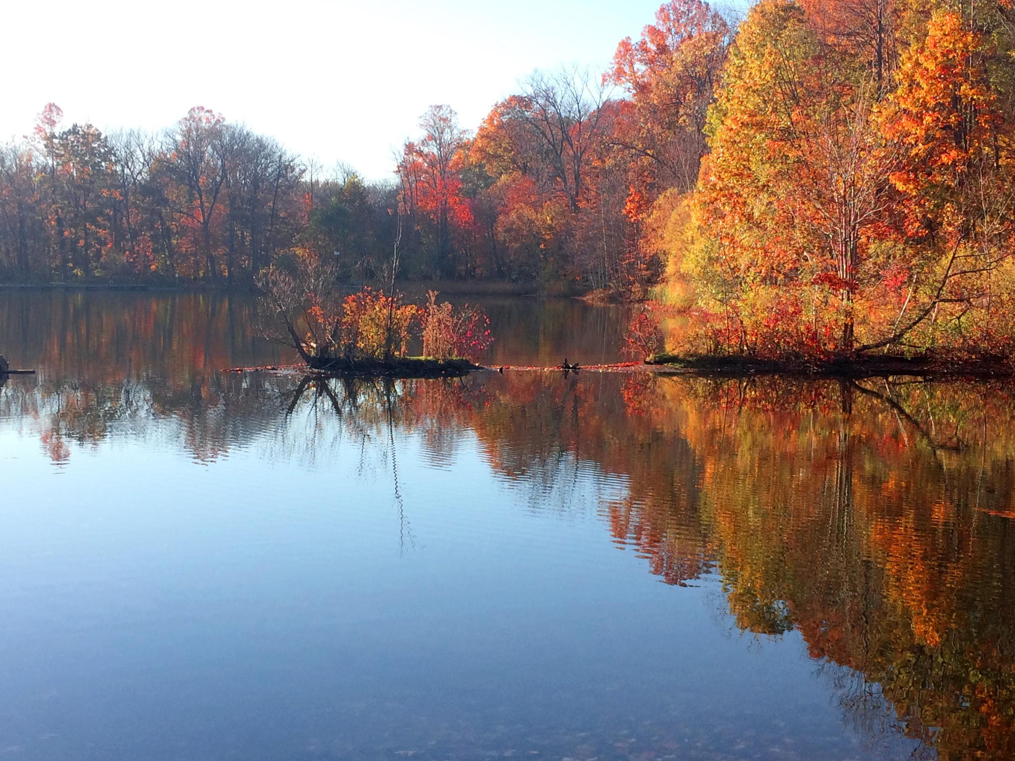 Autumn Reflection by Phillip W. Strunk