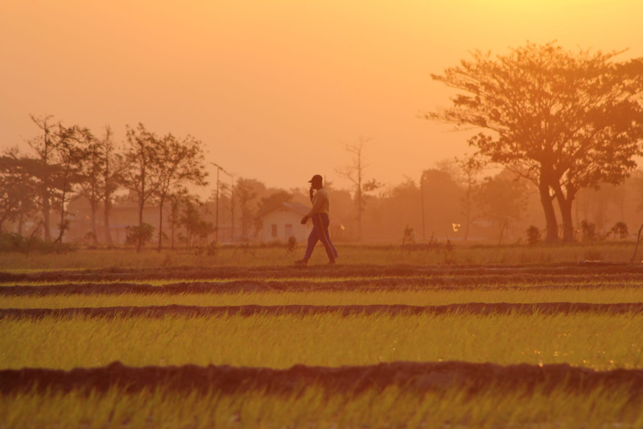 my time for paddy by denisetiawan