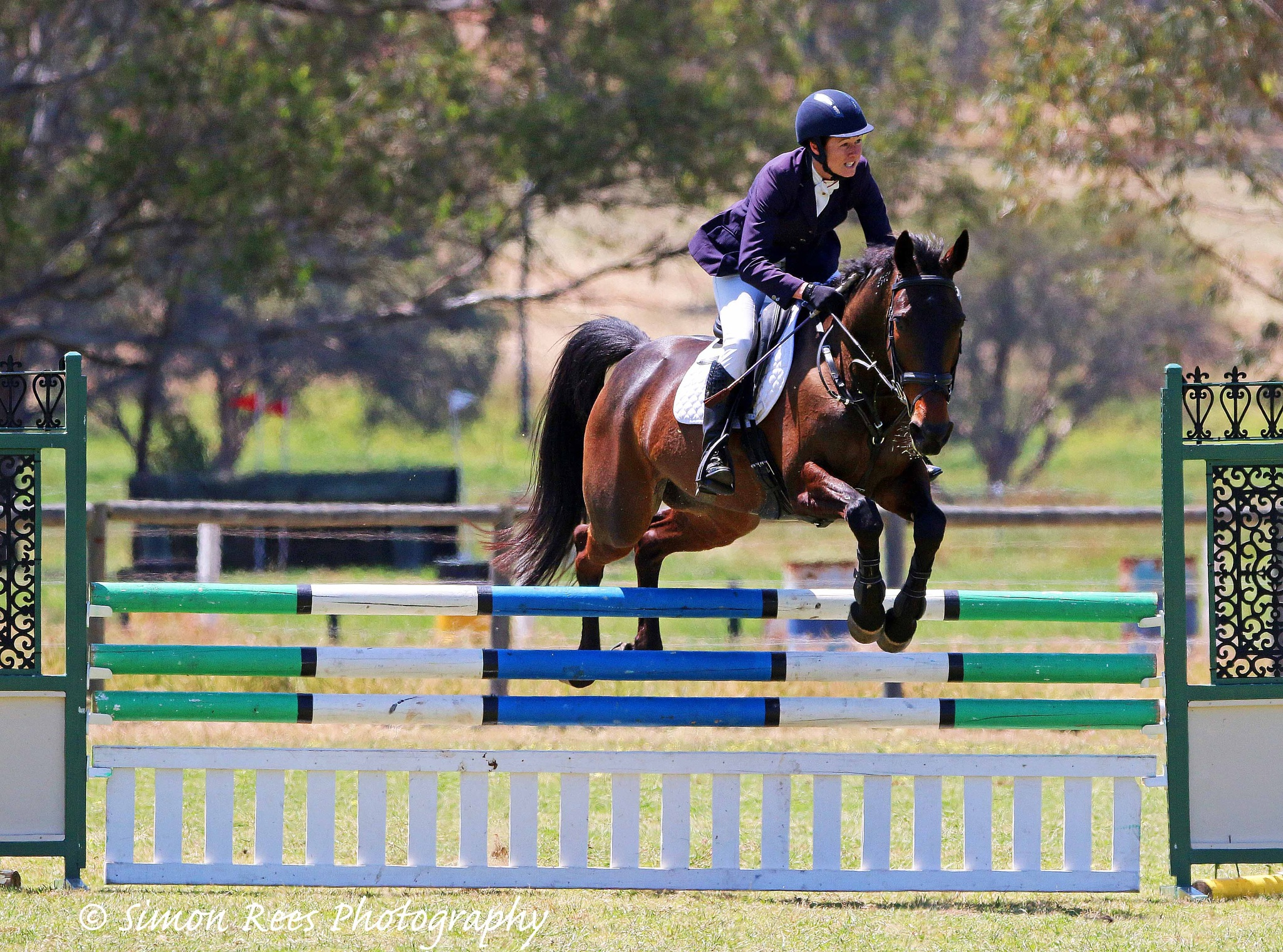 state equestrian centre by SCR1169