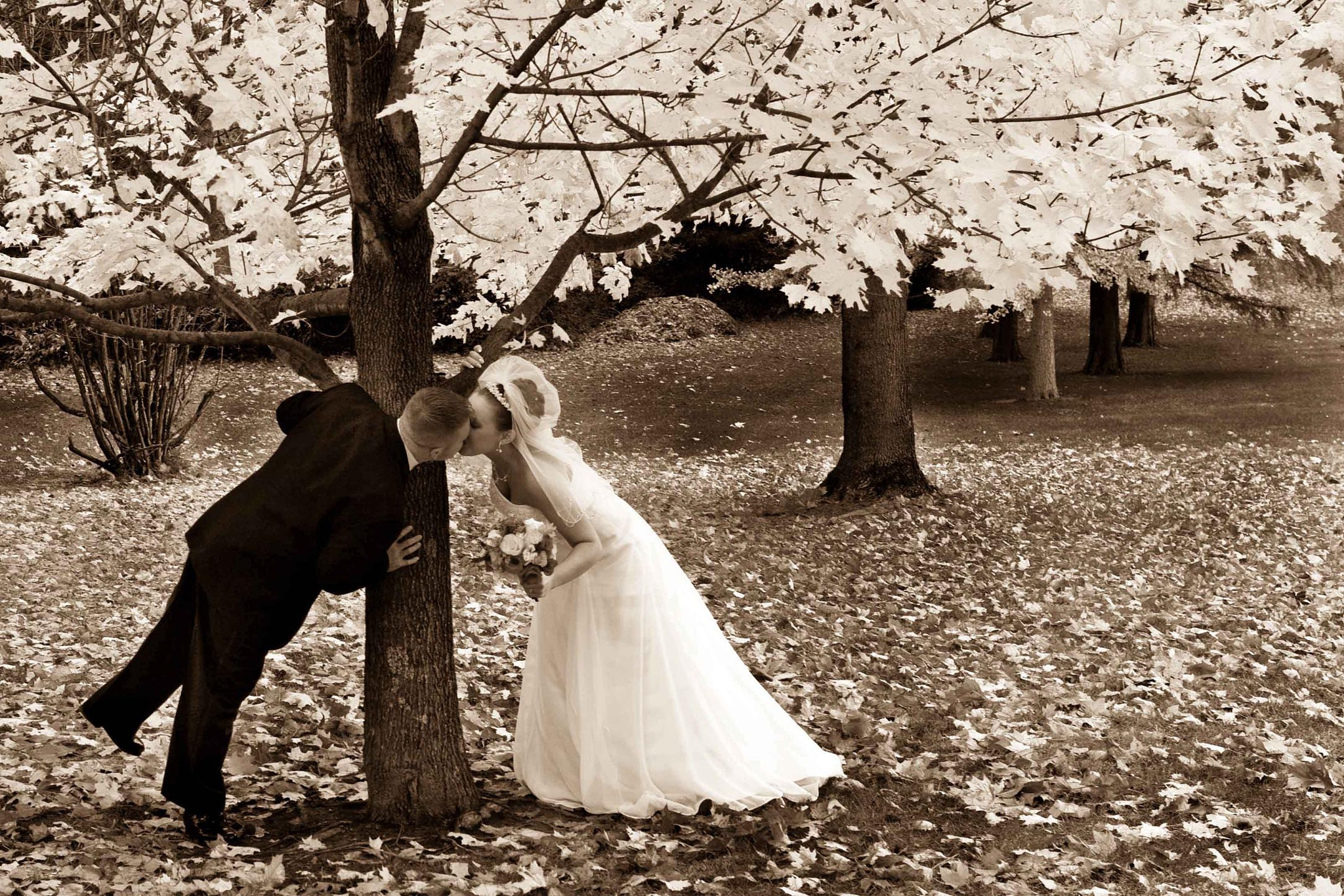 Infrared Kiss by JP Parmley