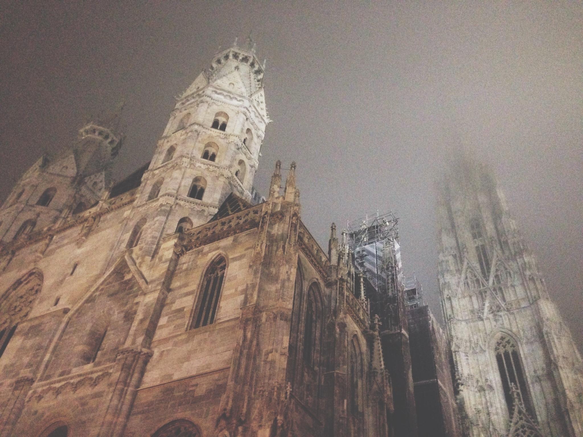 Gothic by Anastsiia Kolomoiets