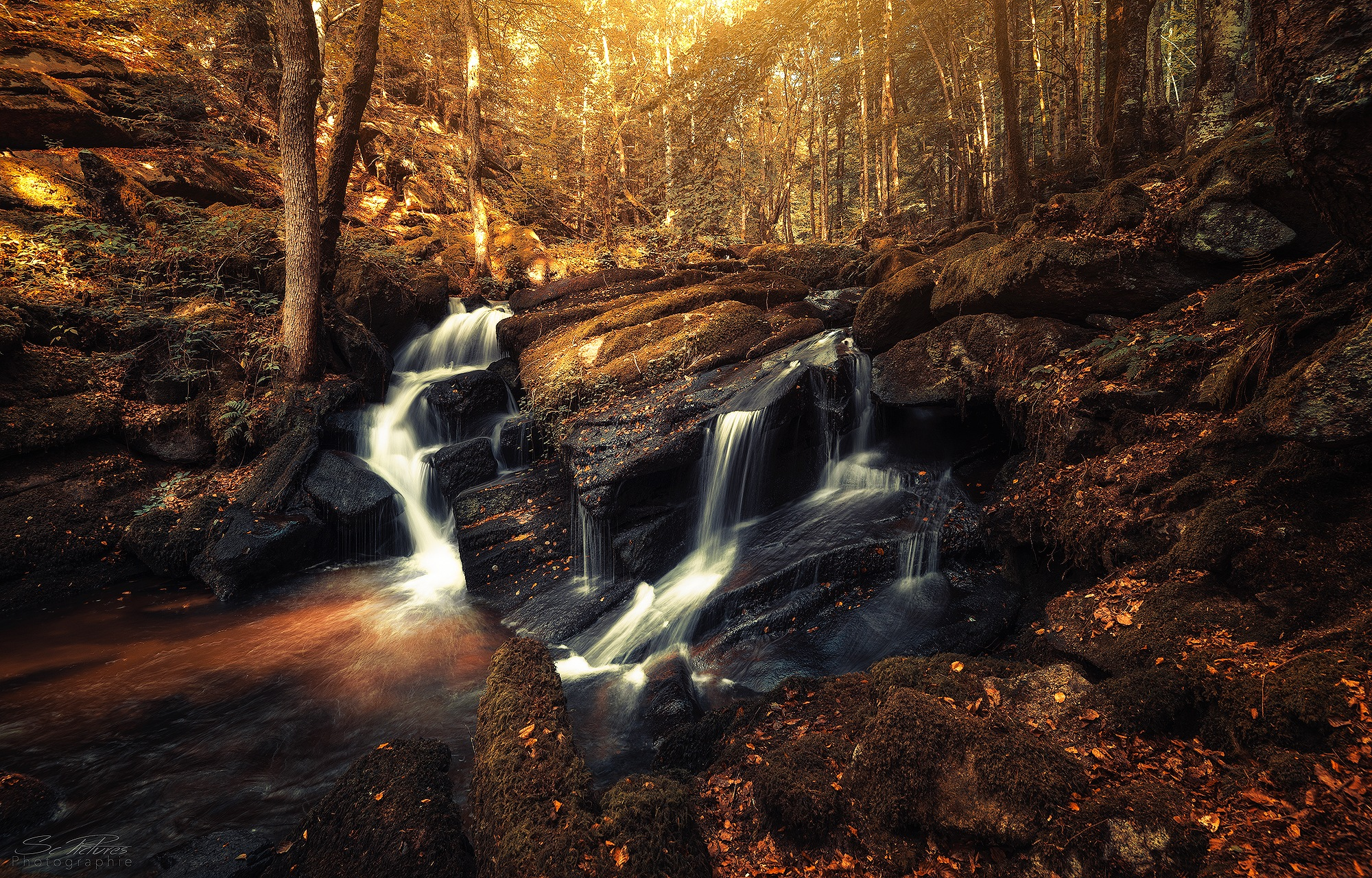 Welcome Autumn by scpictures