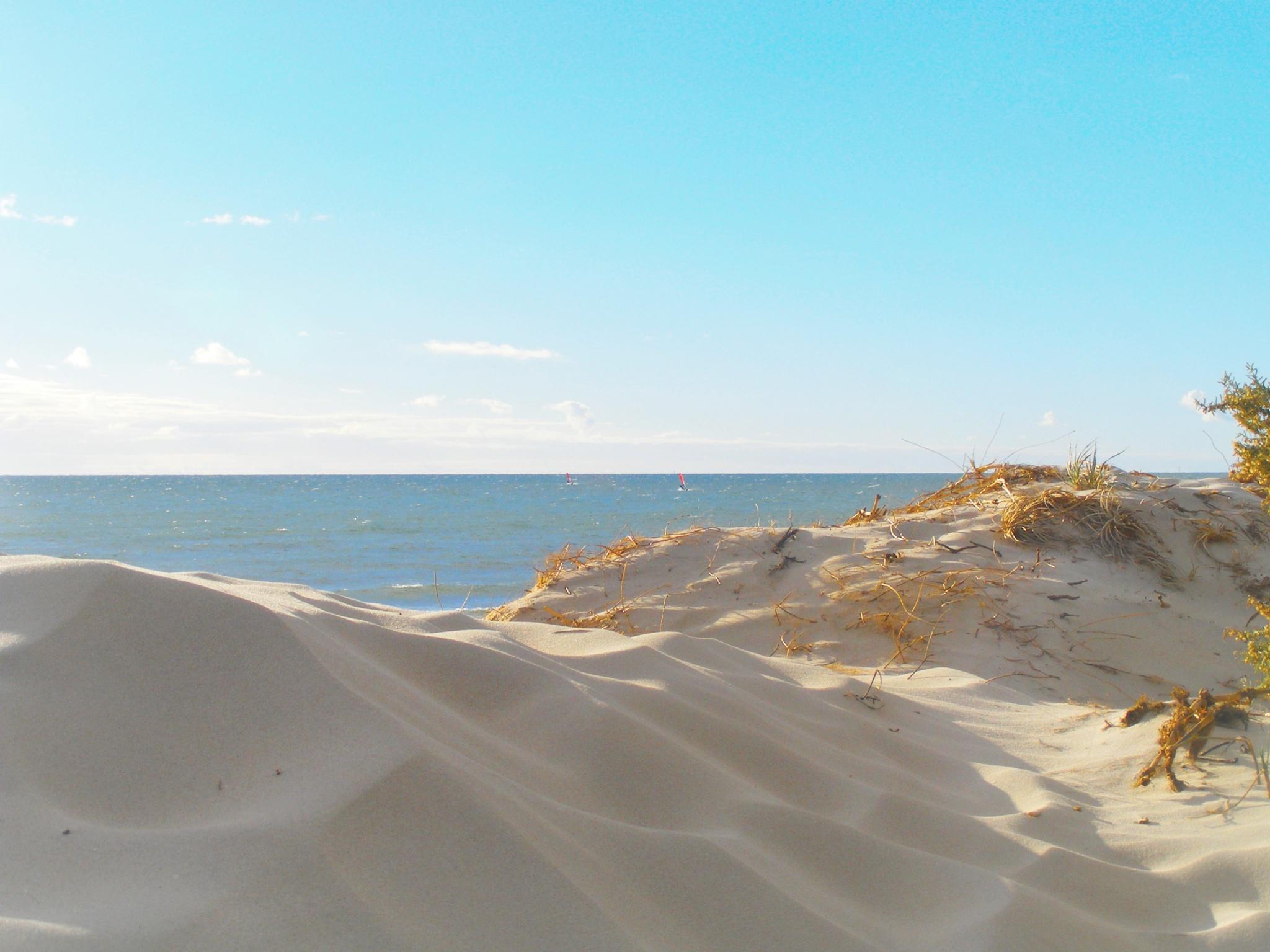Sandy Beach by elisero300