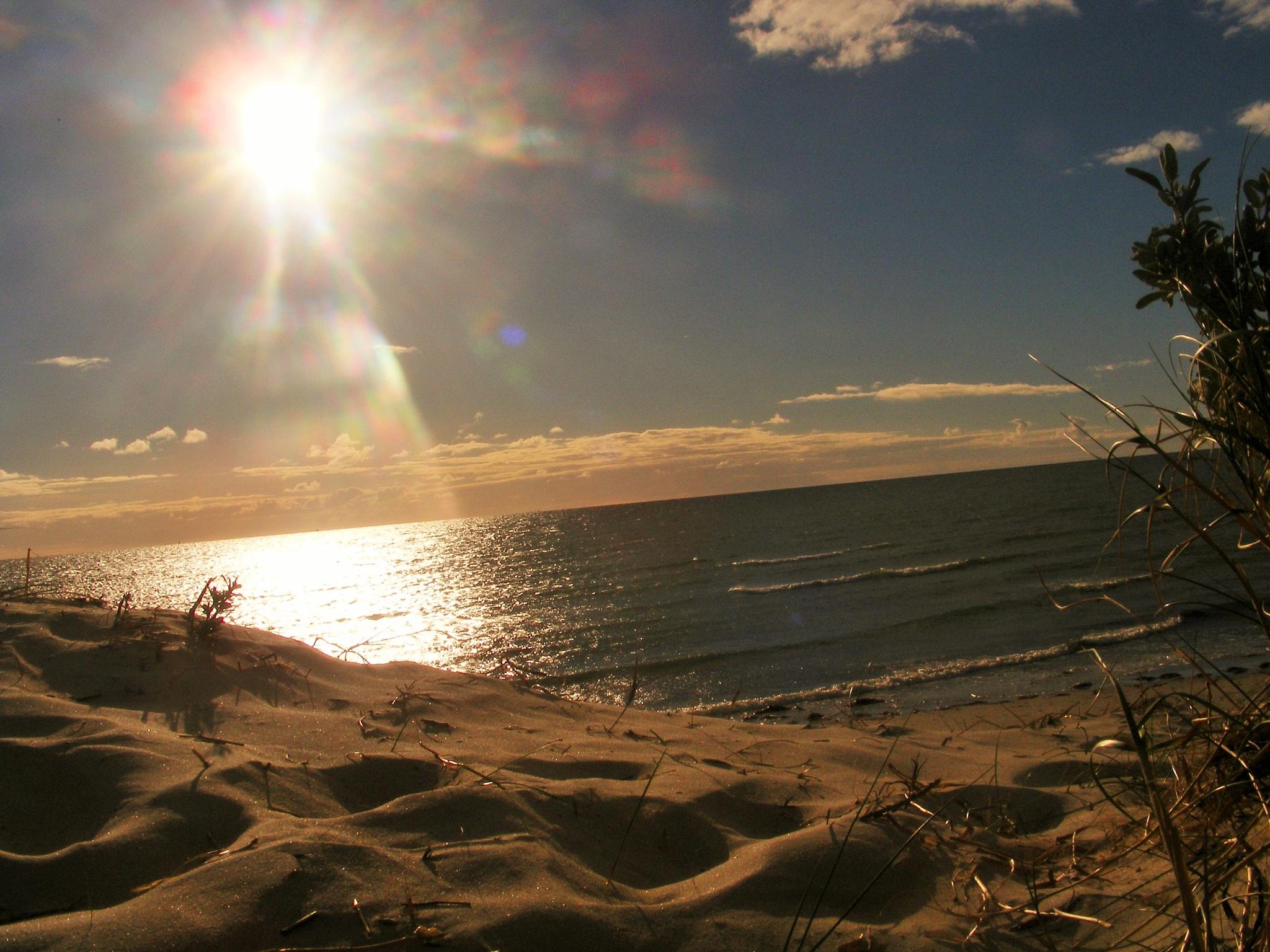 Side Beach by elisero300