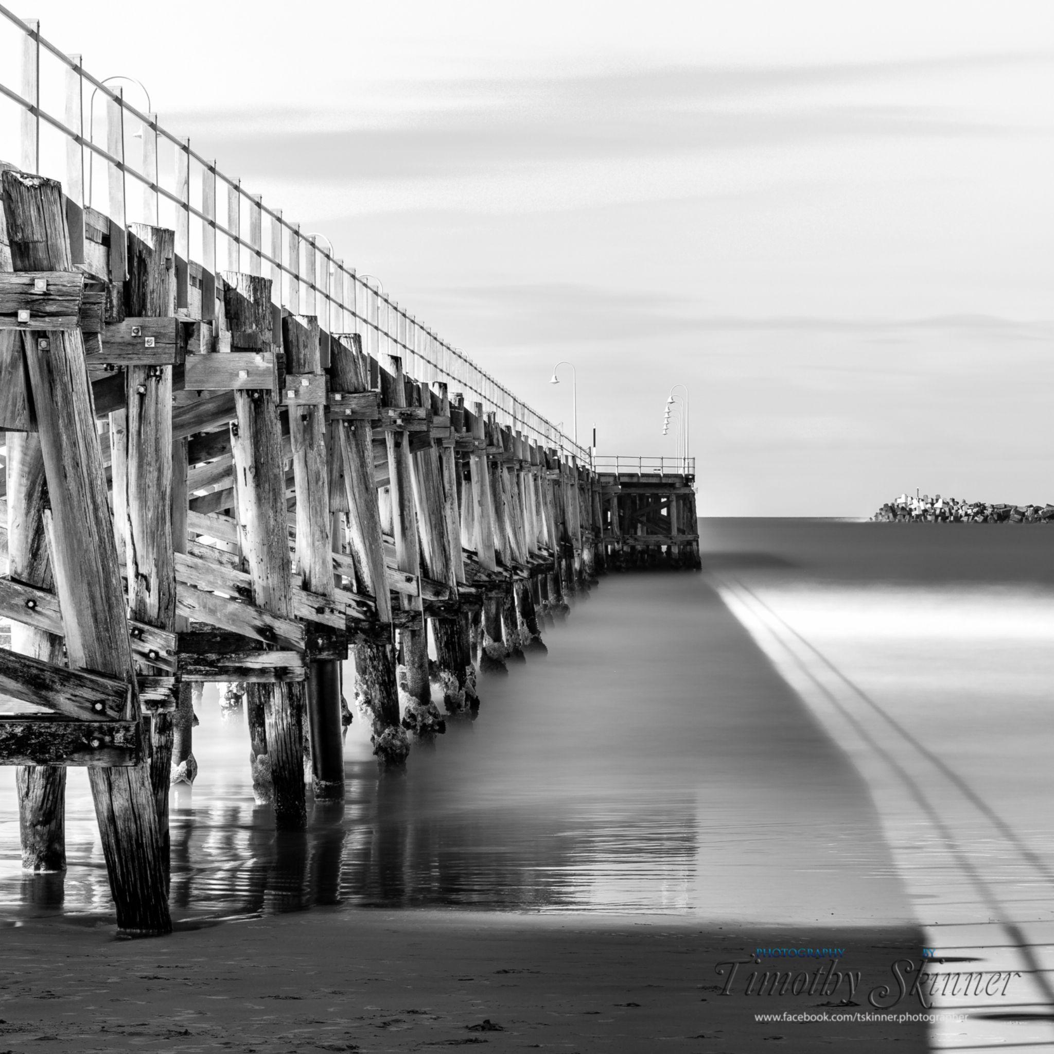 Coffs Harbour Jetty B&W by Timothy Skinner