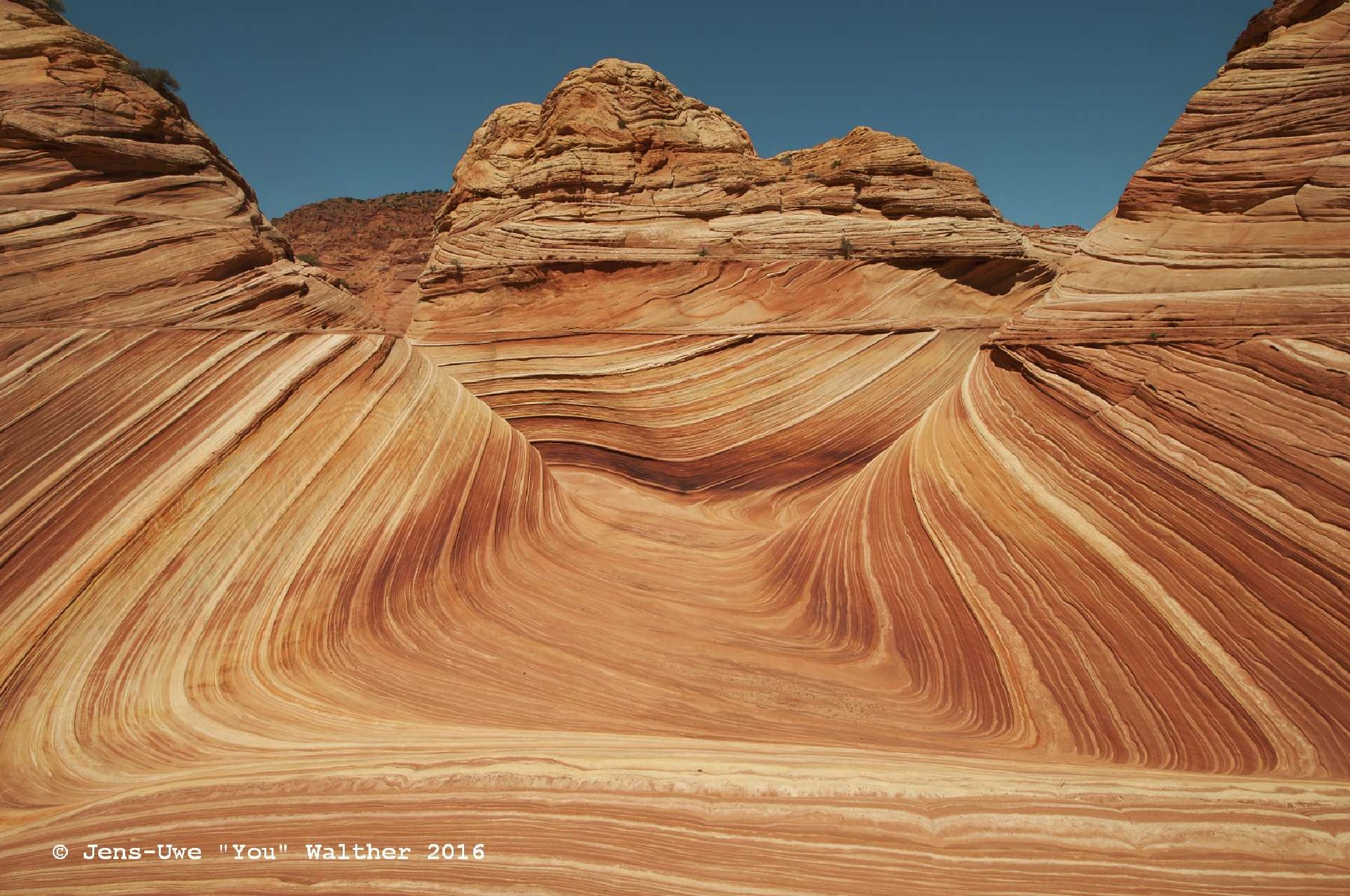 Photo in Landscape #the wave #arizona #coyote buttes north #ussouthwest