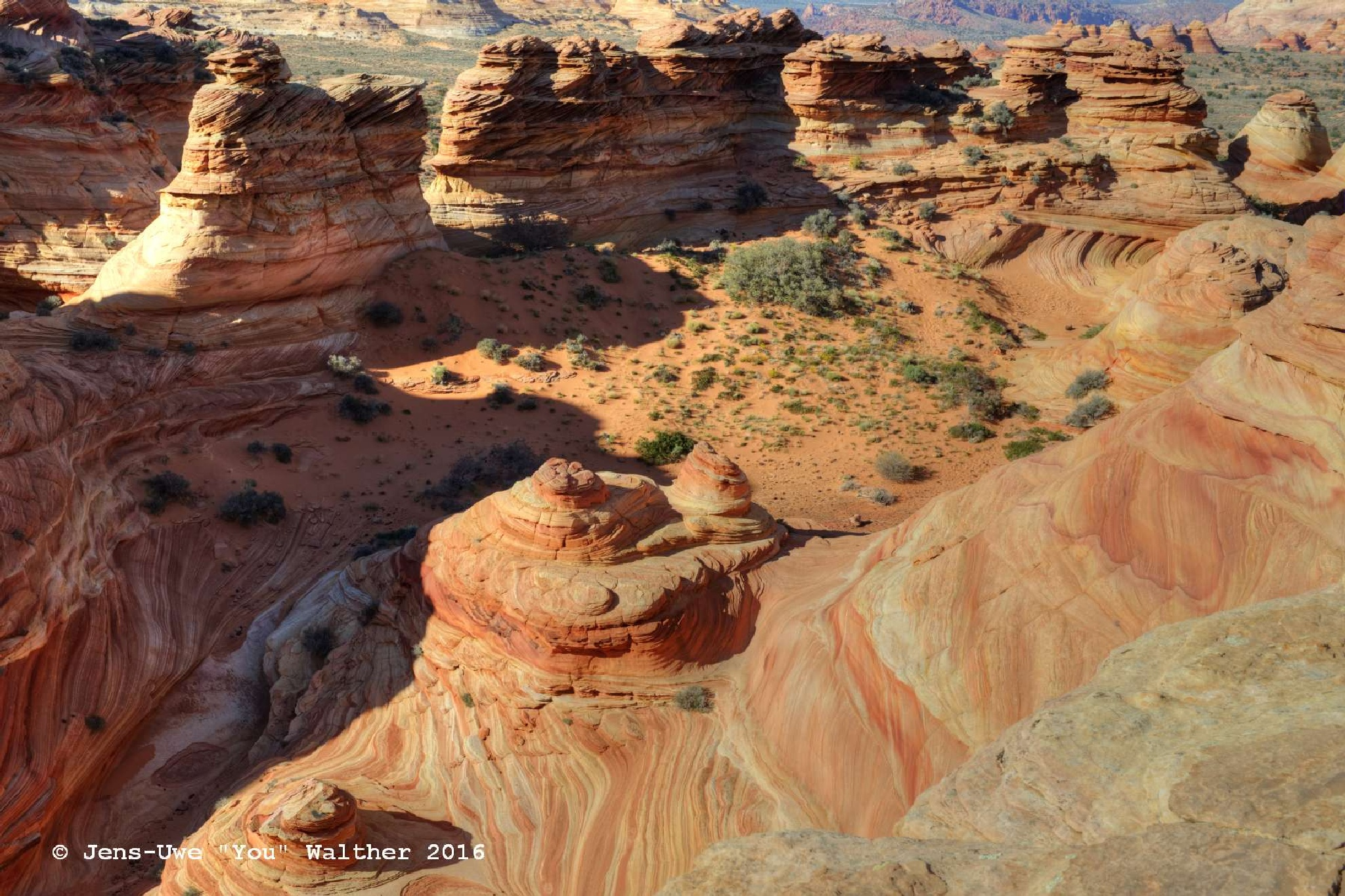 Photo in Landscape #colorful #arizona #coyote buttes south #sandstone