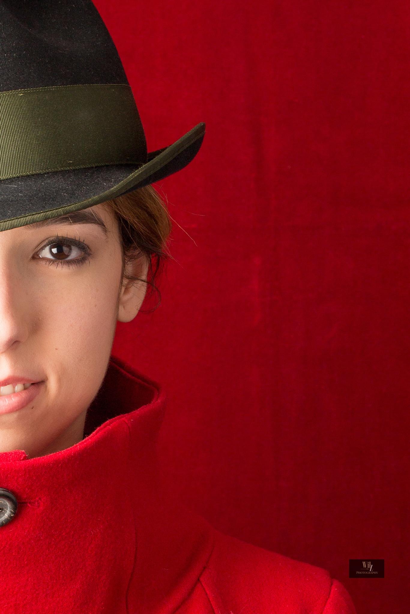 Red Top Hat  by wilvestjens