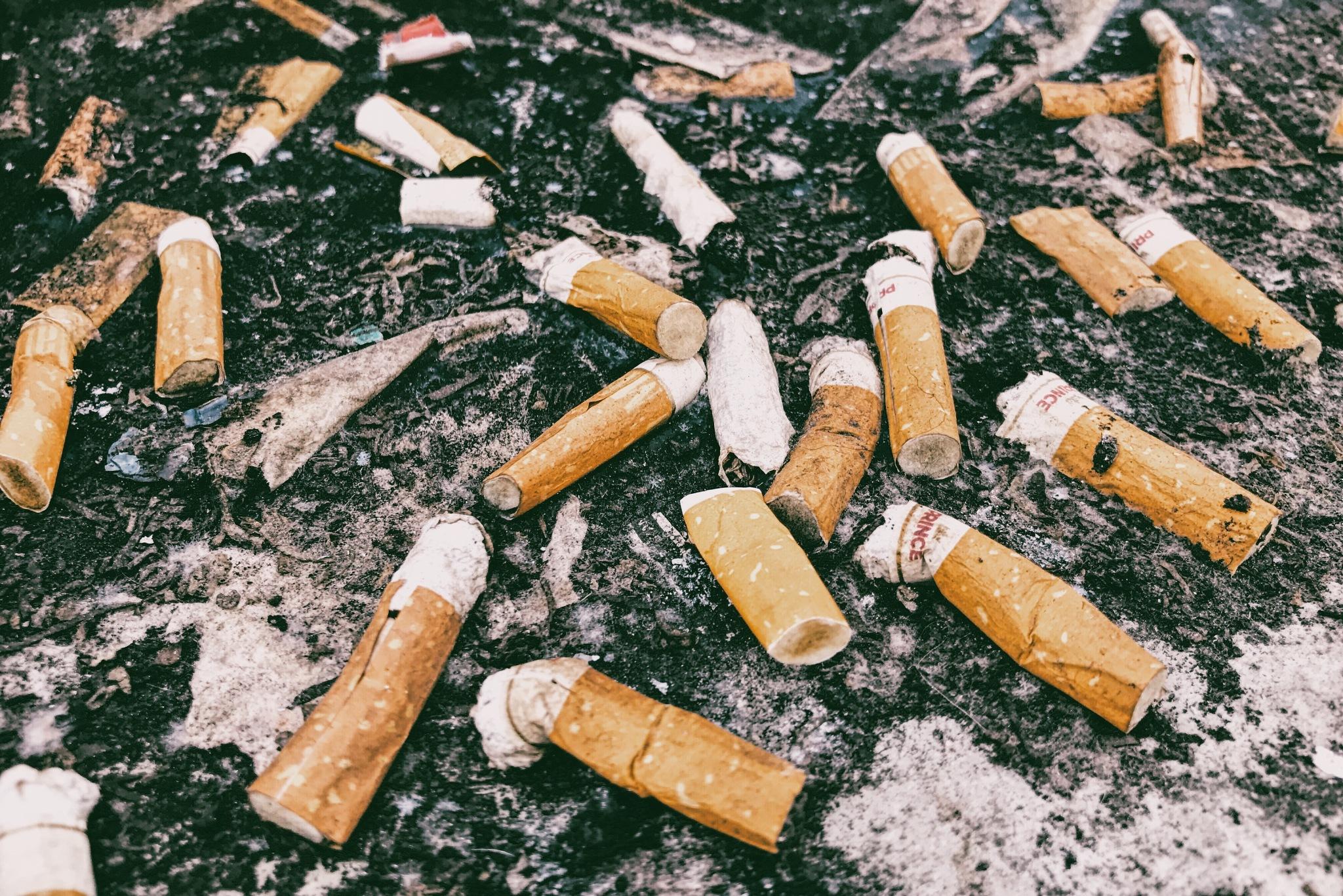 Healthy smokes by Goran Jorganovich