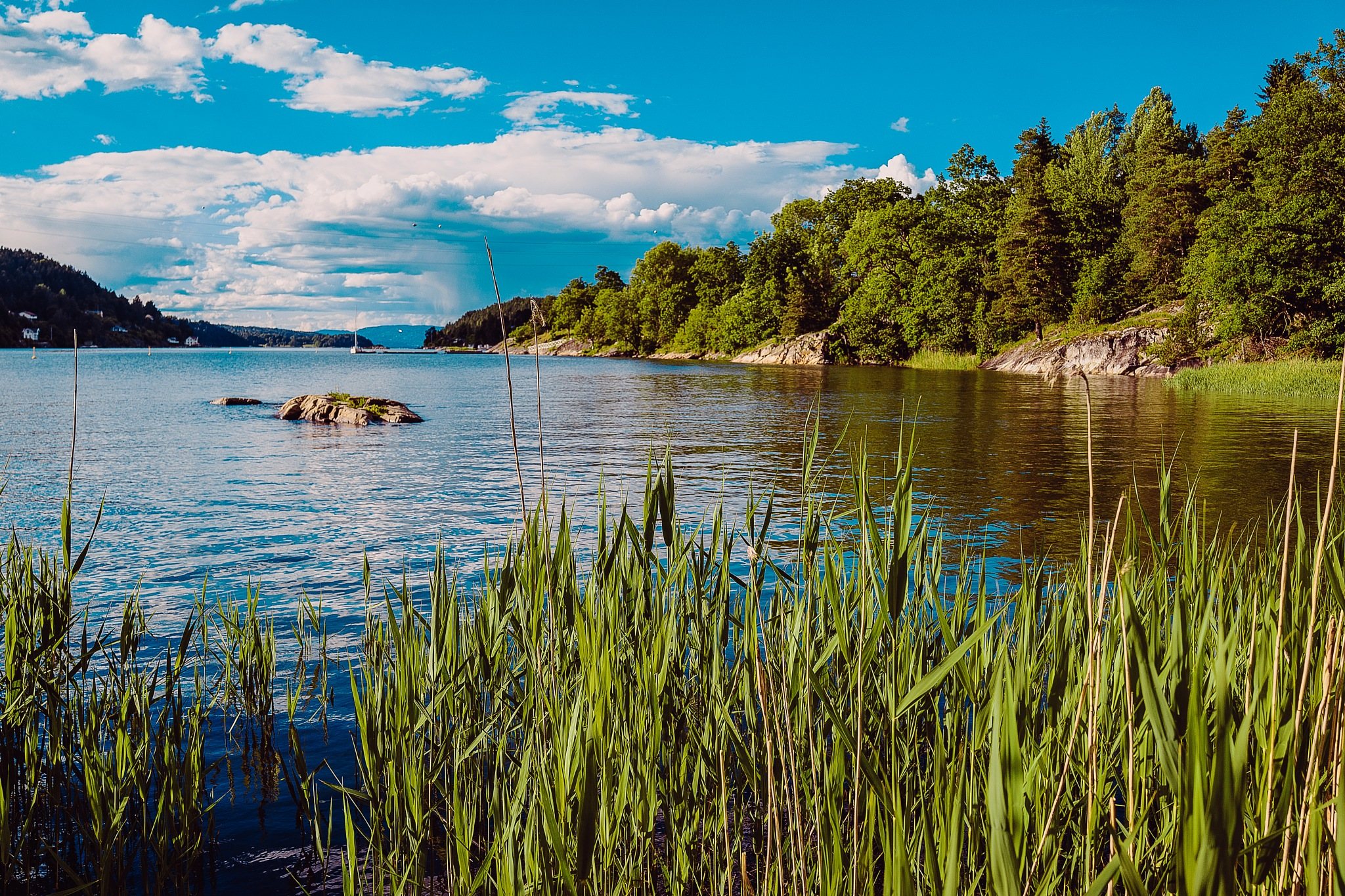 Summer in Scandinavia - OSLO FJORD by Goran Jorganovich