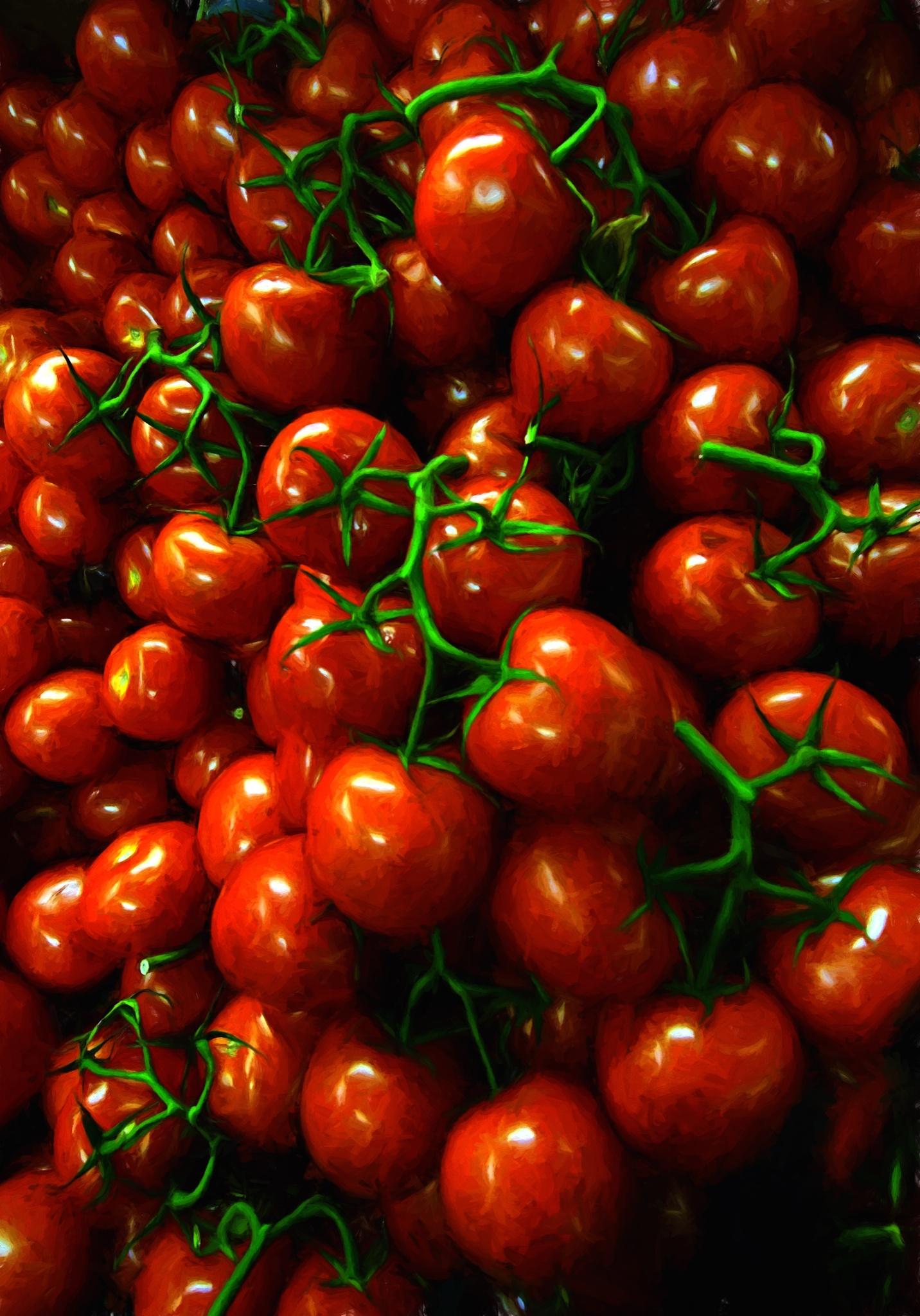 Tomatos by Goran Jorganovich