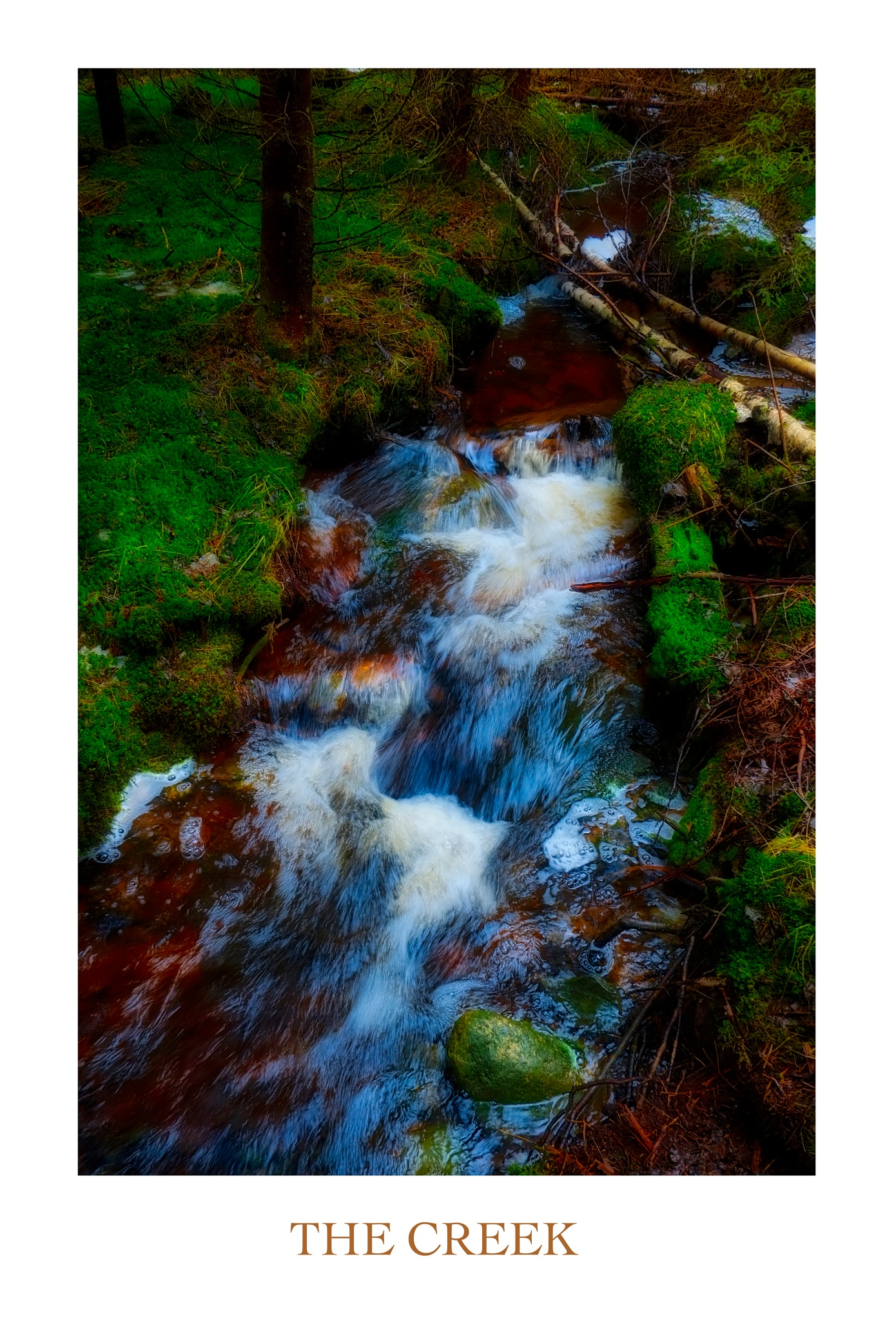 The Creek  by Goran Jorganovich