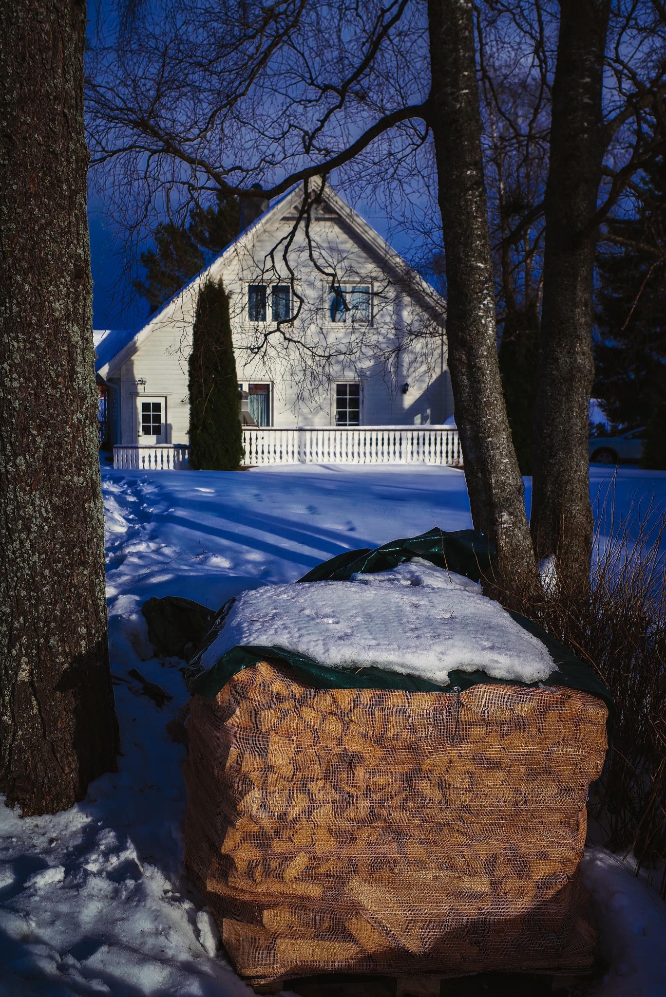 House in  Norwegian Winter Village by Goran Jorganovich