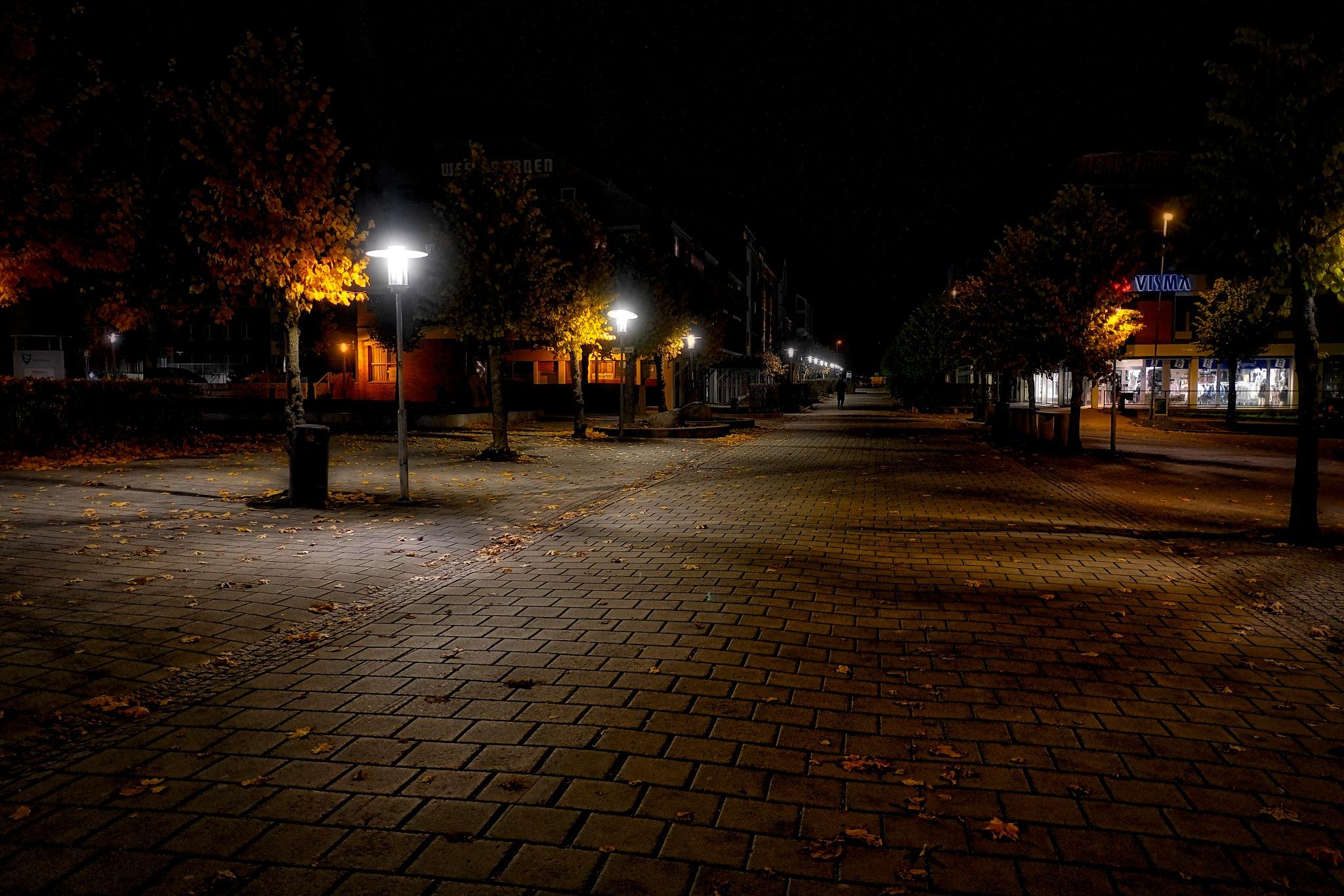 Autumn Night in Norway by Goran Jorganovich