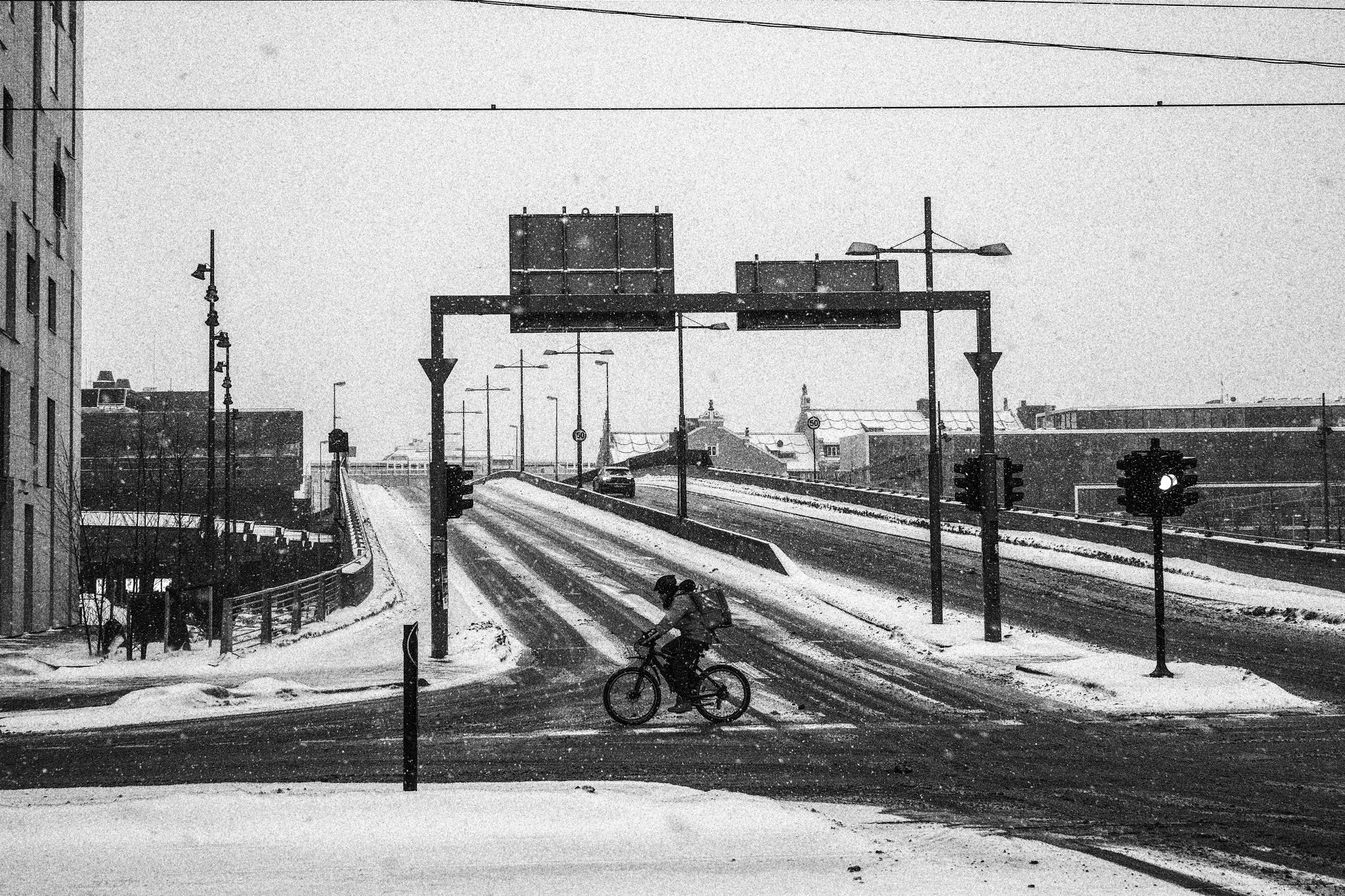 Norwegian winter Kamikaze in Oslo by Goran Jorganovich