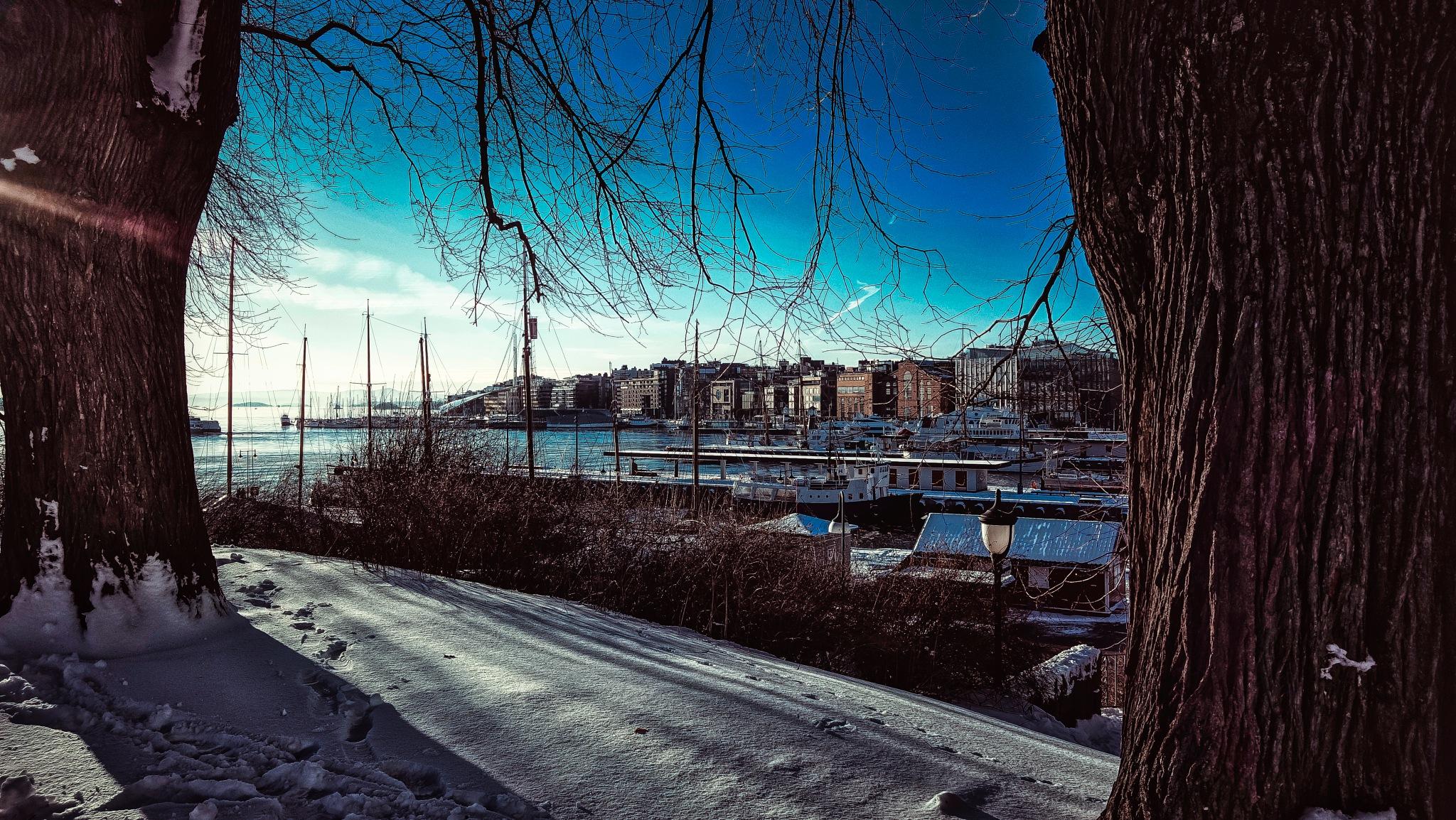 Winter at Oslo fjord  by Goran Jorganovich