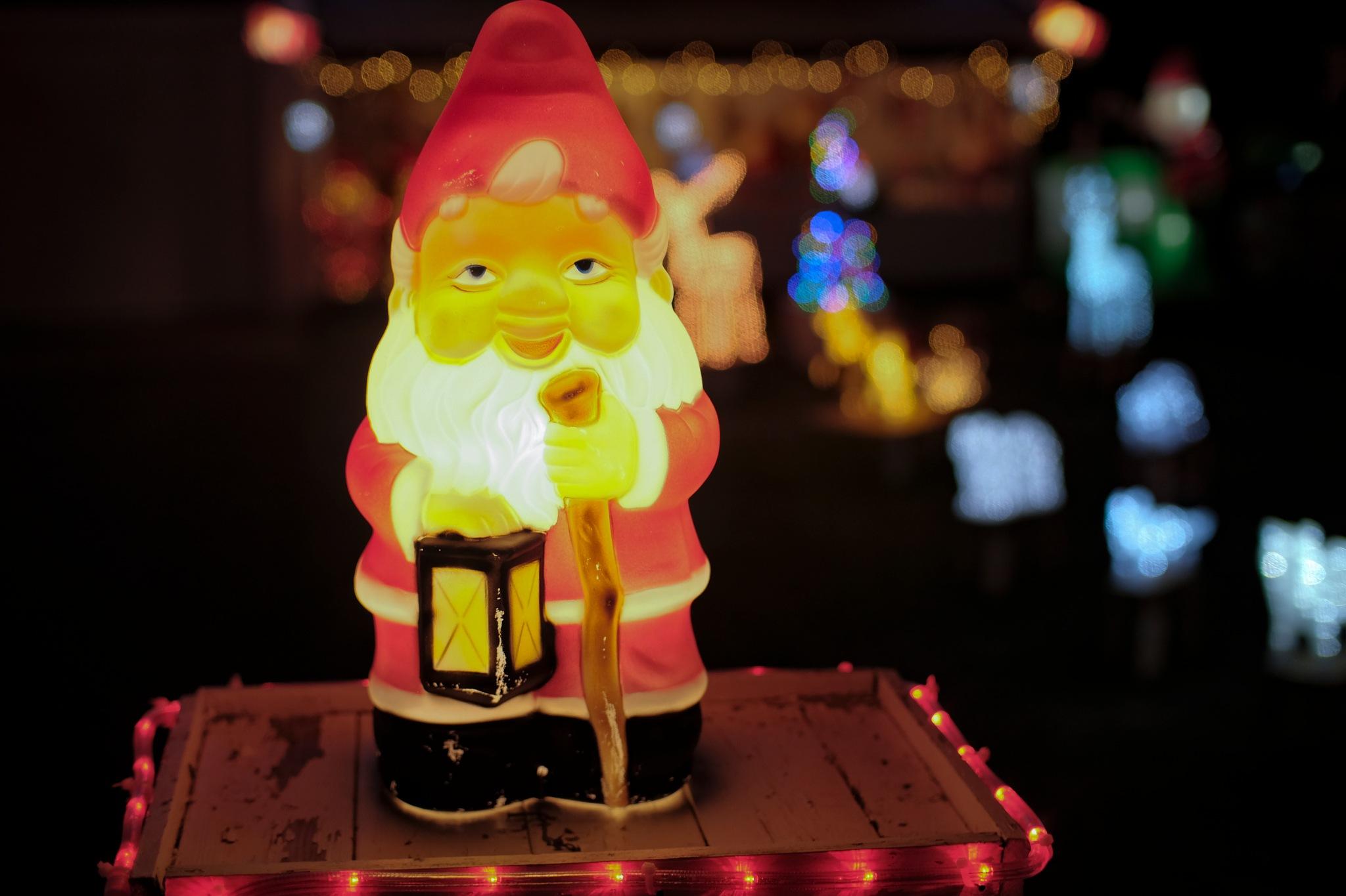 House Owner who likes Christmas by Goran Jorganovich