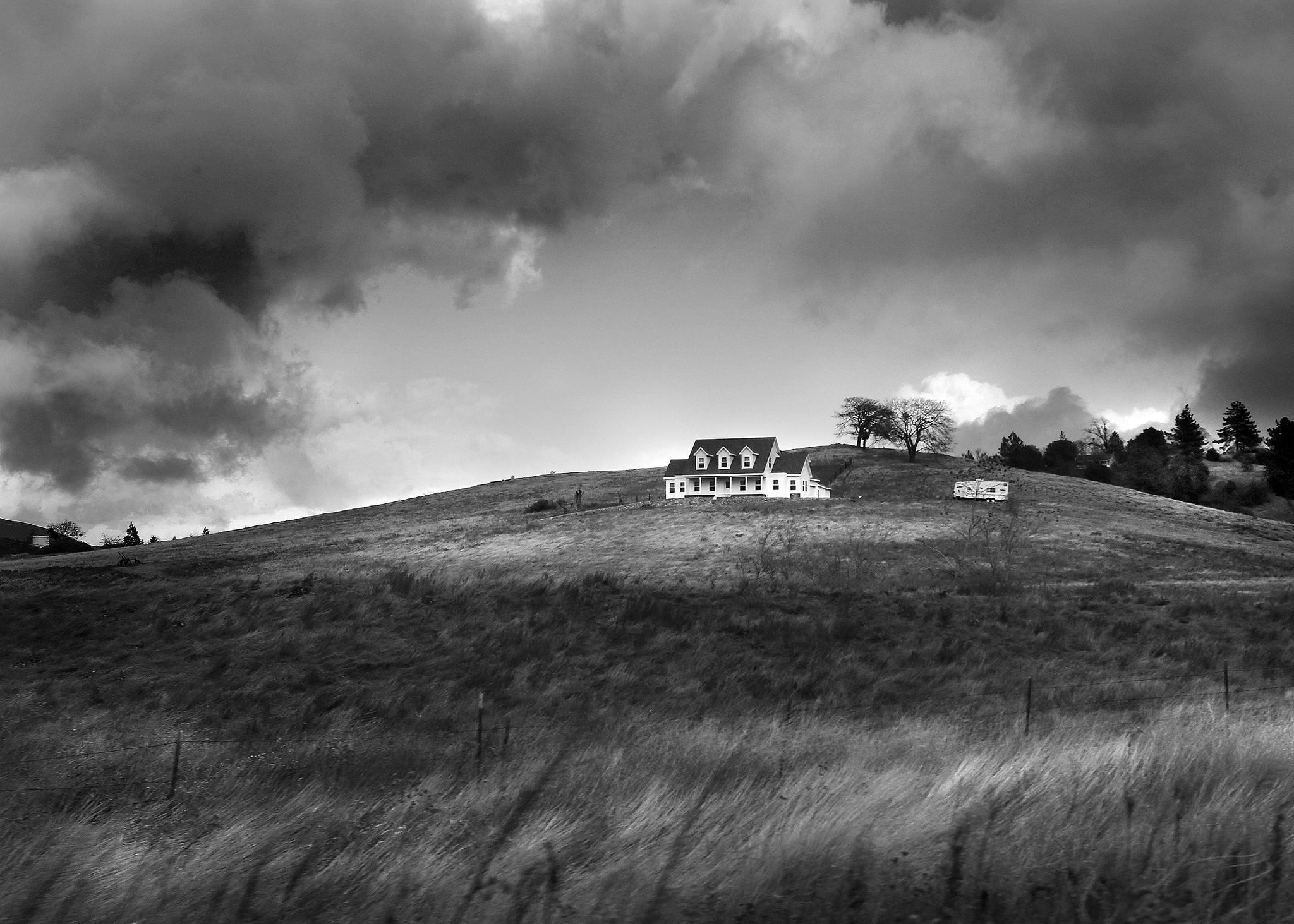 boreal house by  eduardo luna