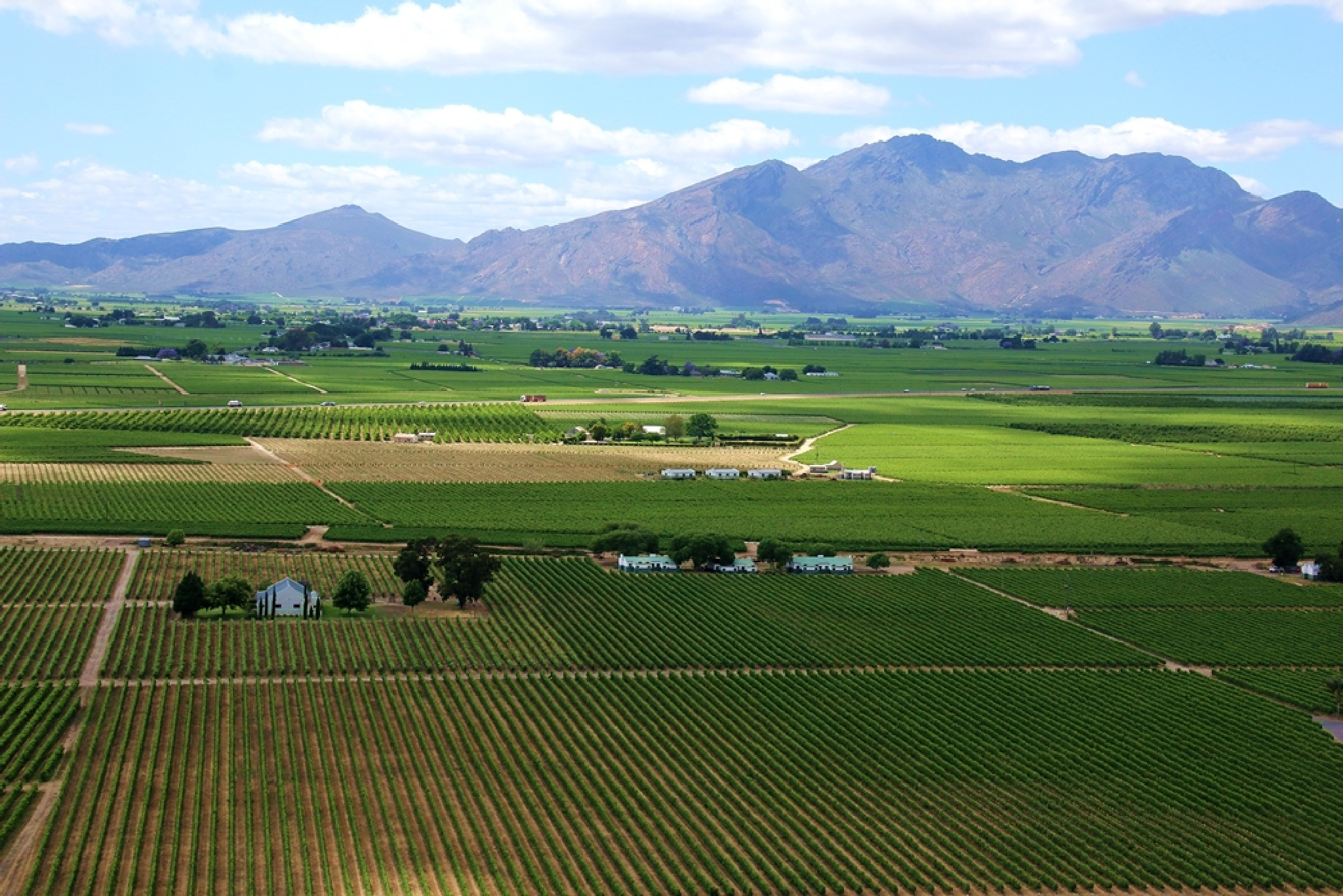vineyards and mountains by ABRossouw