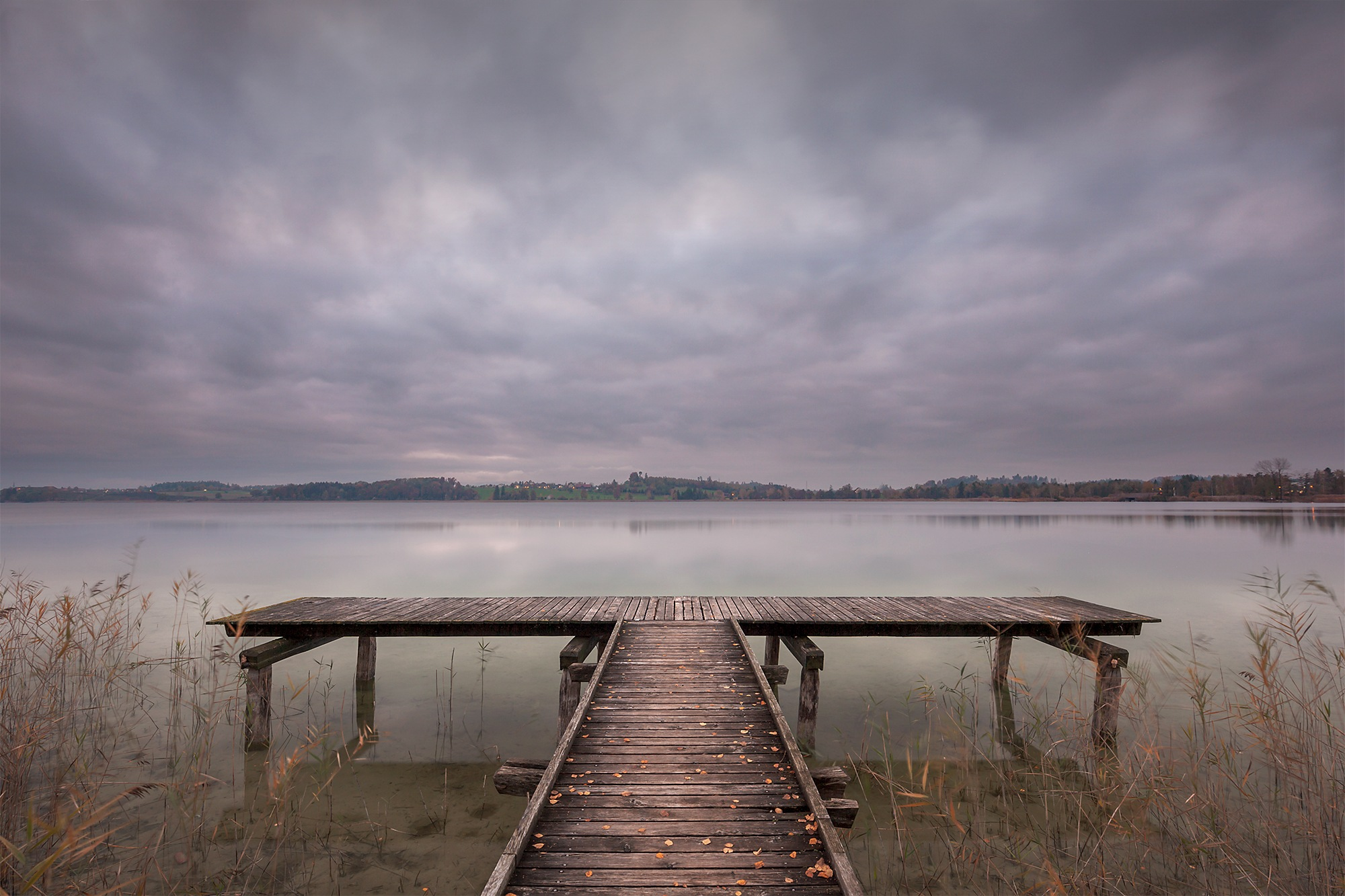 Melancholy by Tamara Tschopp