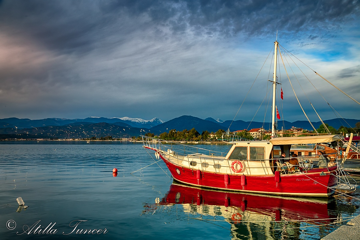 Red by Atilla Tuncer