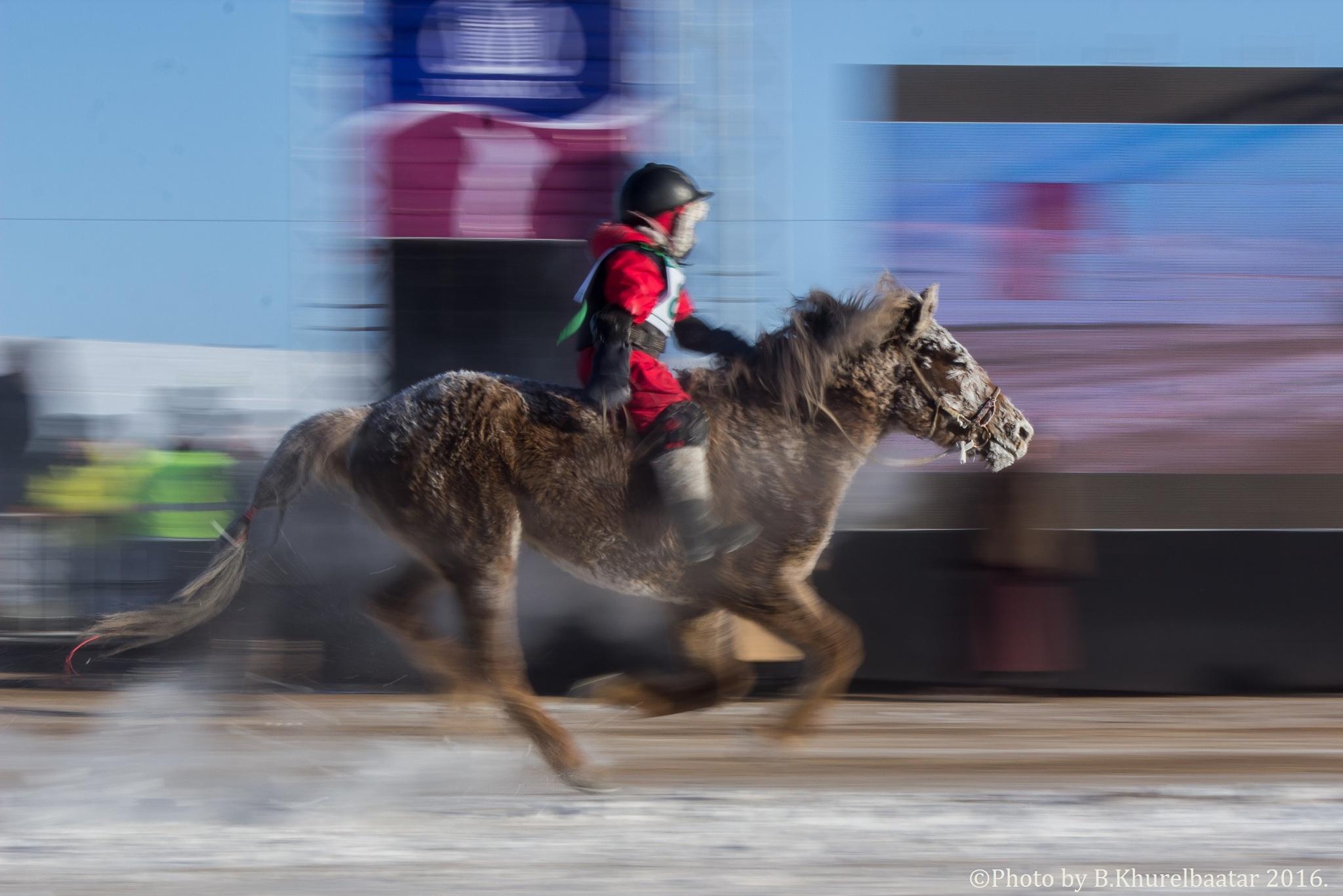 Horse racing of Mongolia by Khurelbaatar Batsvh