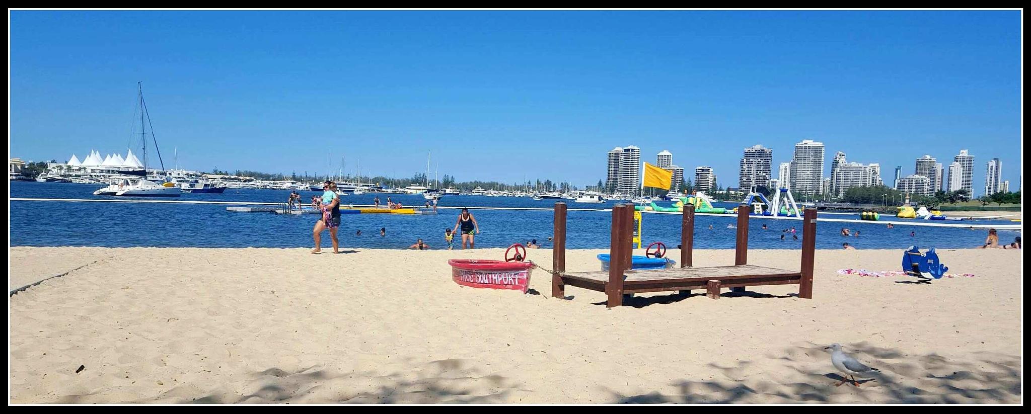 The Broadwater parklands ..Gold Coast Australia by Joanne Korner