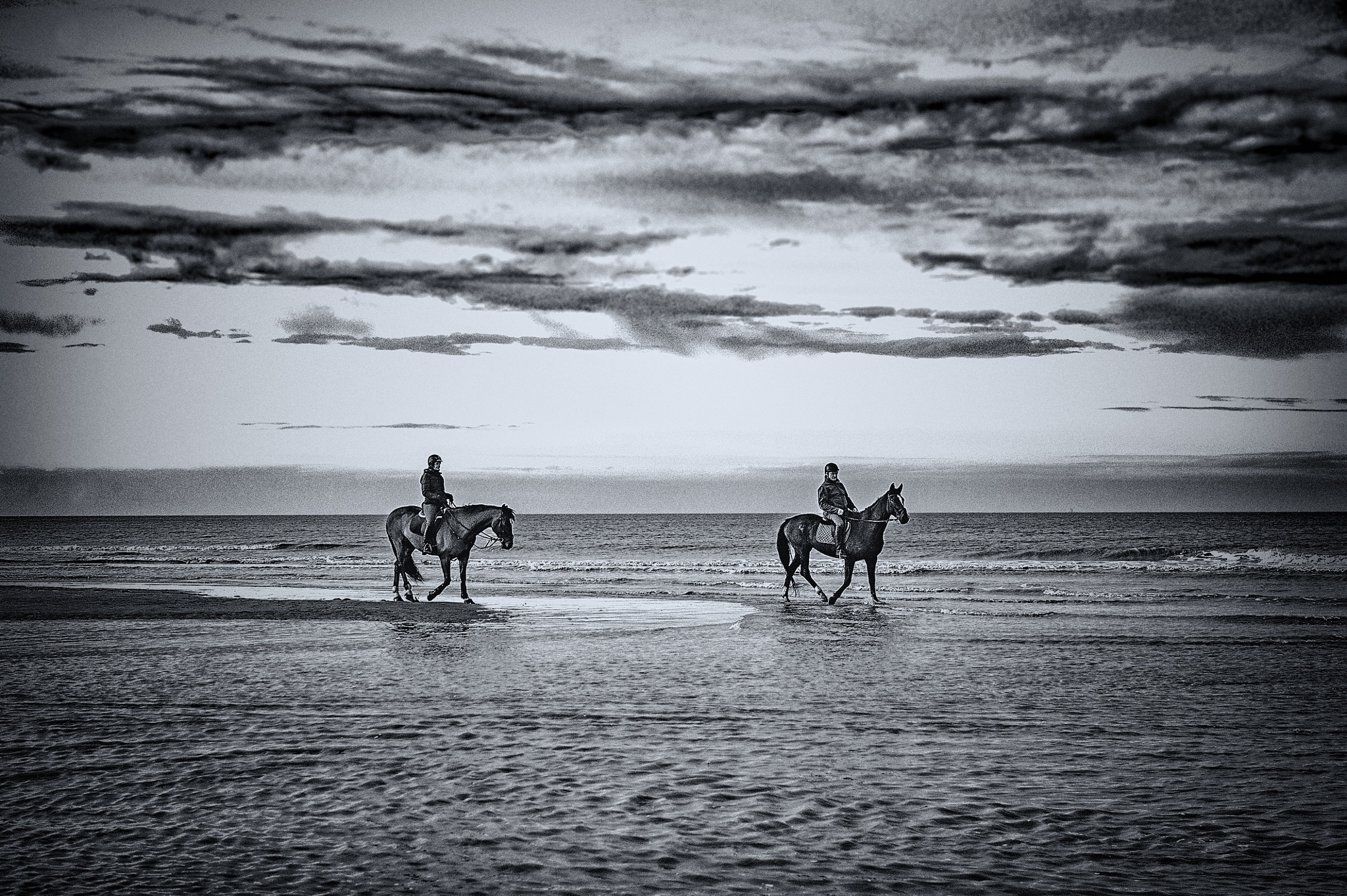 Horses with no name by rvfossoul