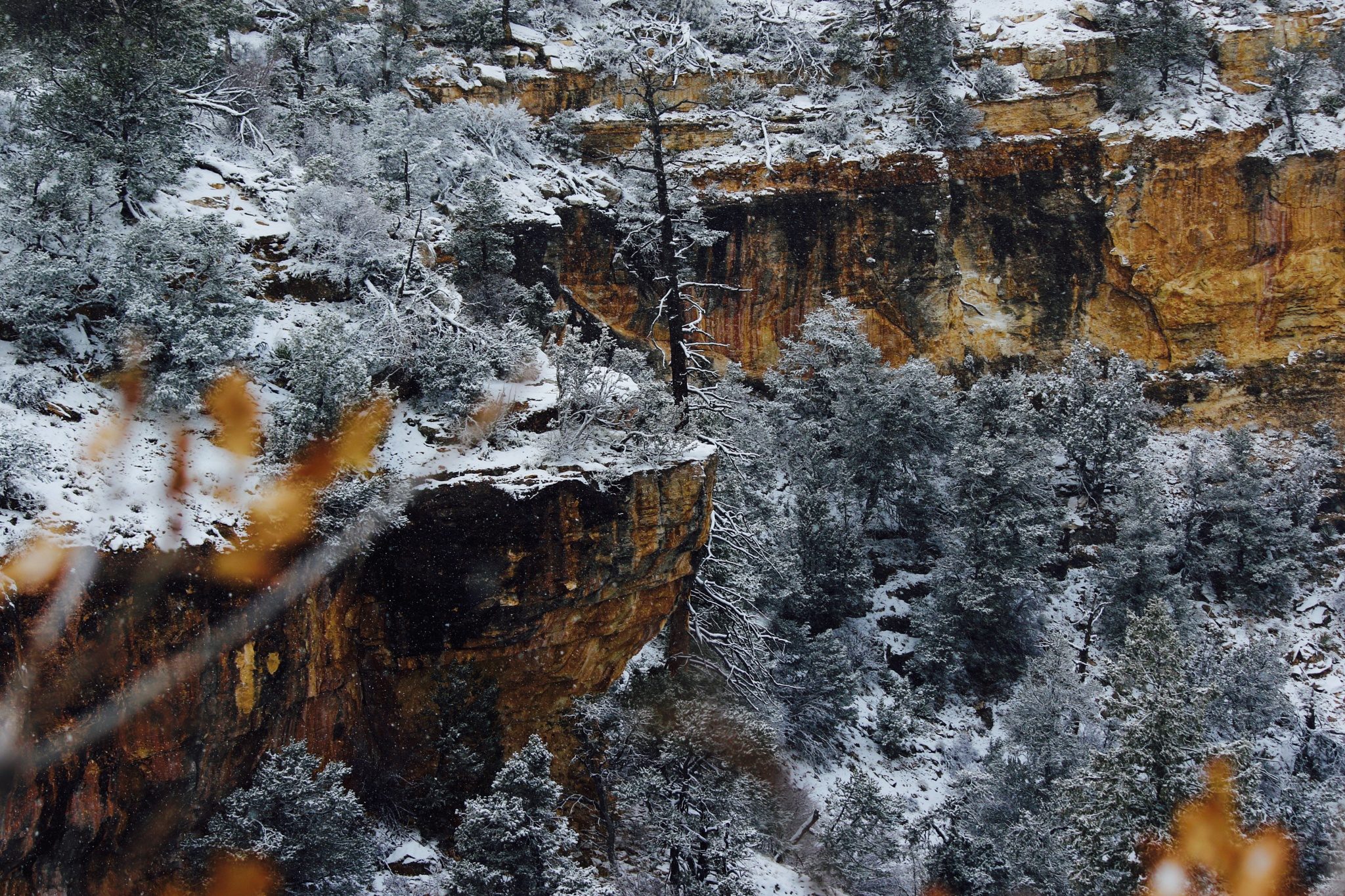 Snow Day In The Grand Canyon by PaulWhiteman