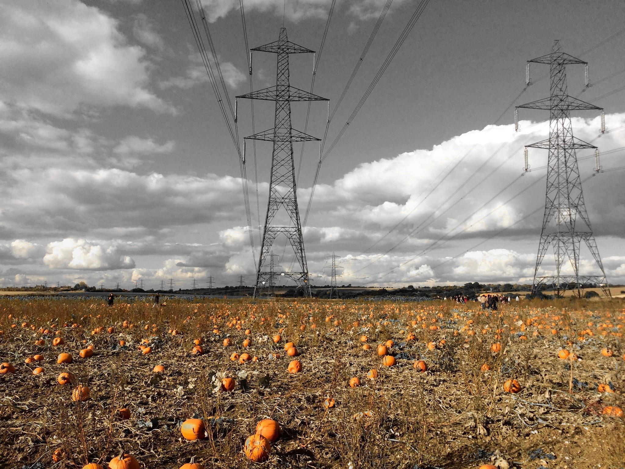 Pylons and Pumpkins by PaulWhiteman