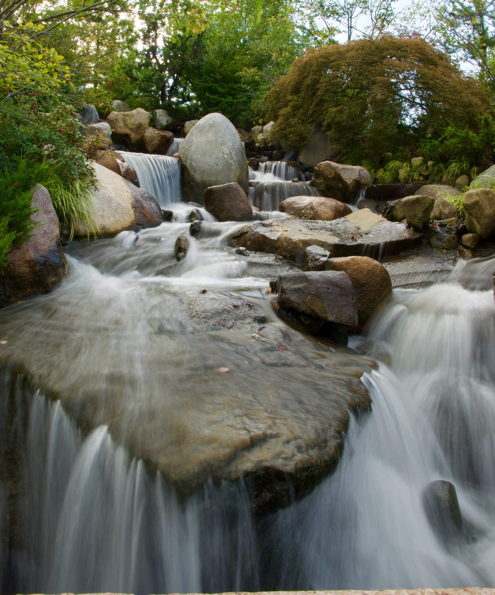 waterfall in Japanese Garden by John  Lepisto