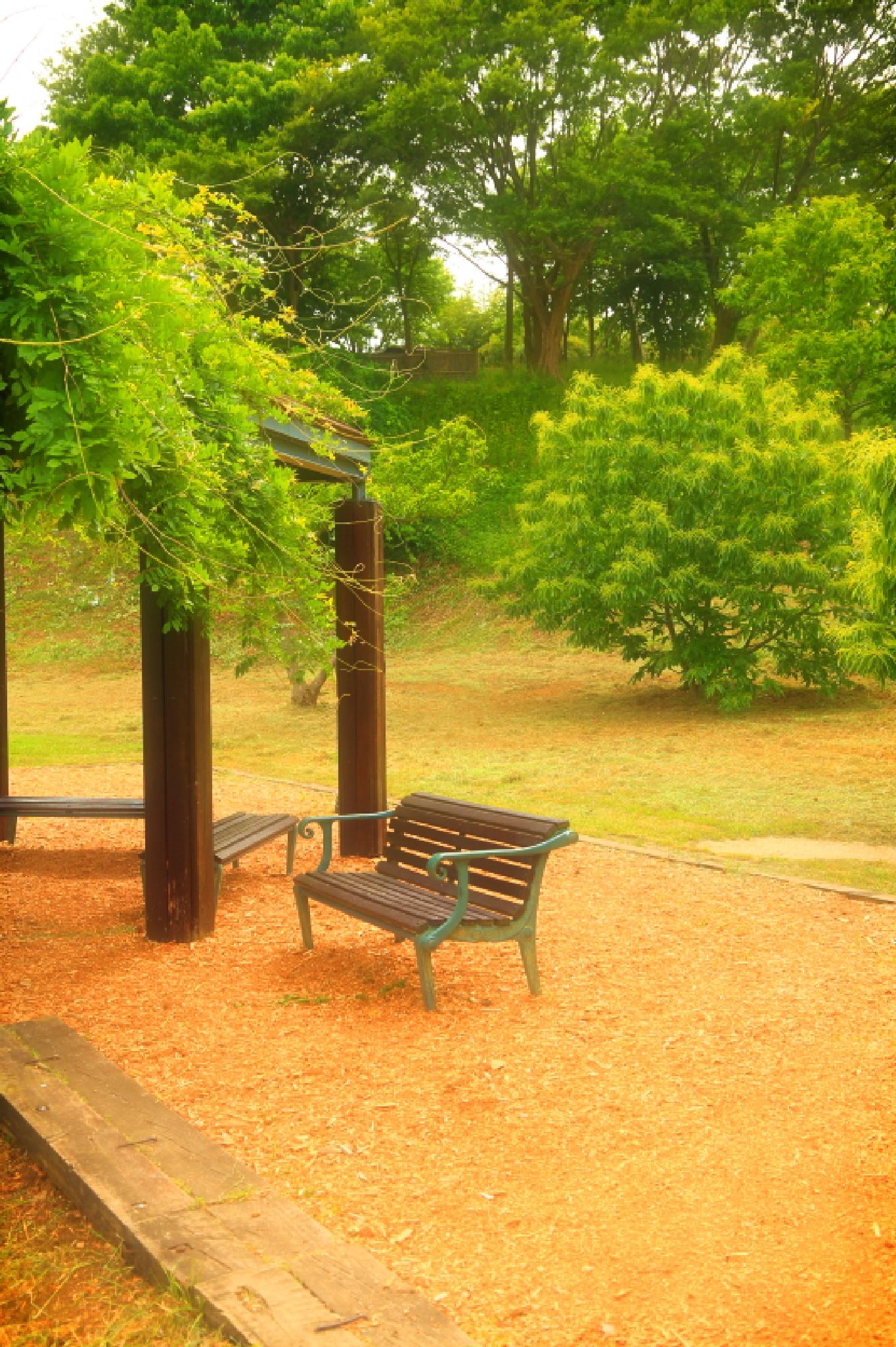 Fantastic bench by HAJIME KAMEZAKI