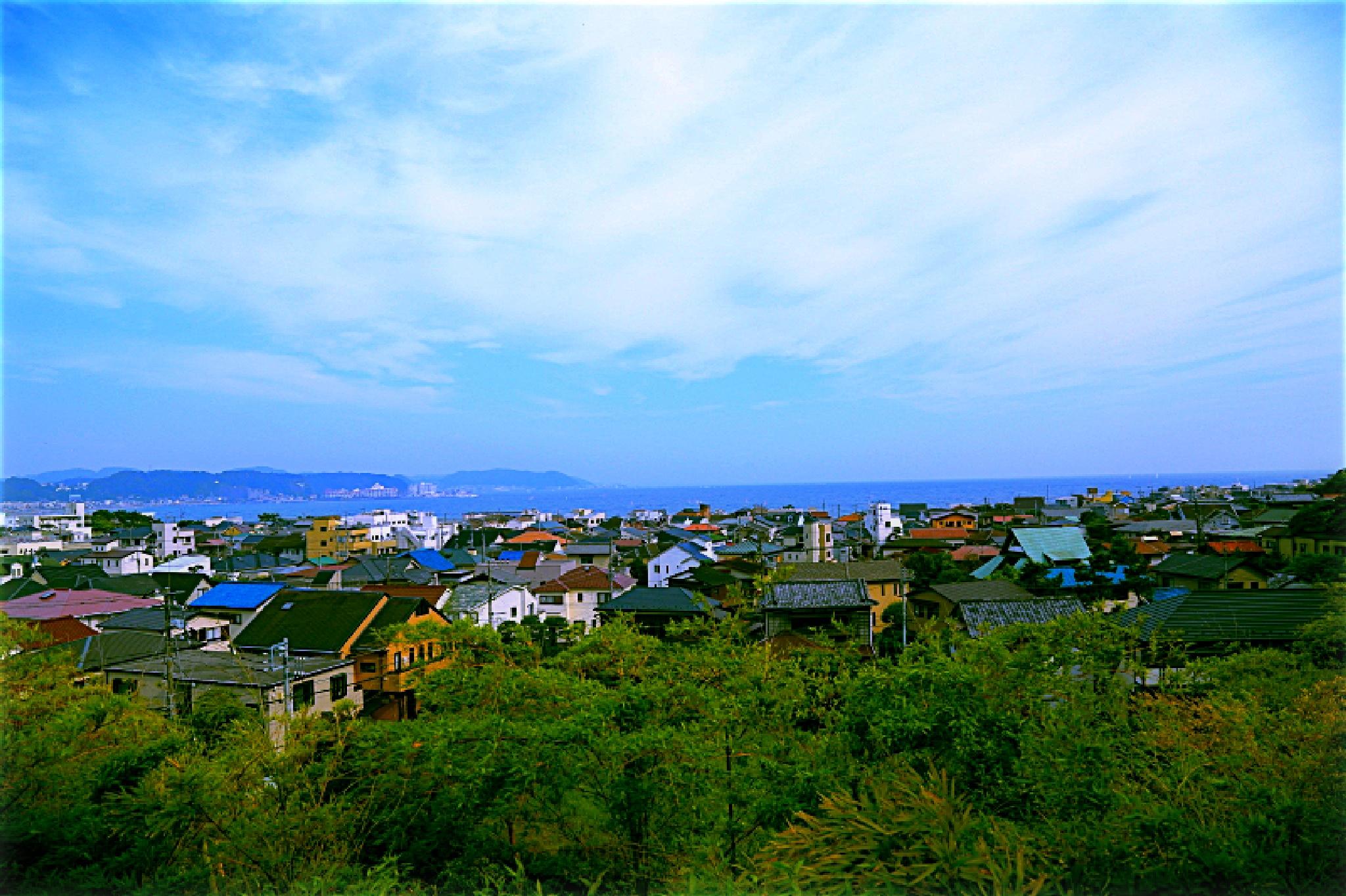 Good view by HAJIME KAMEZAKI